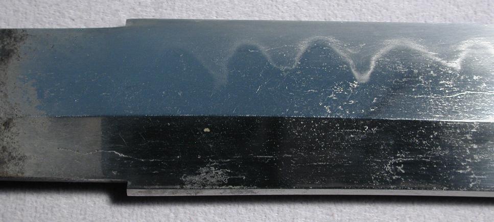 DSCN6583.JPG