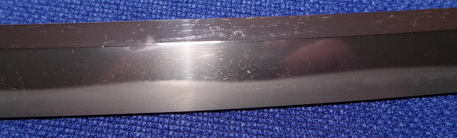 P1020880.JPG