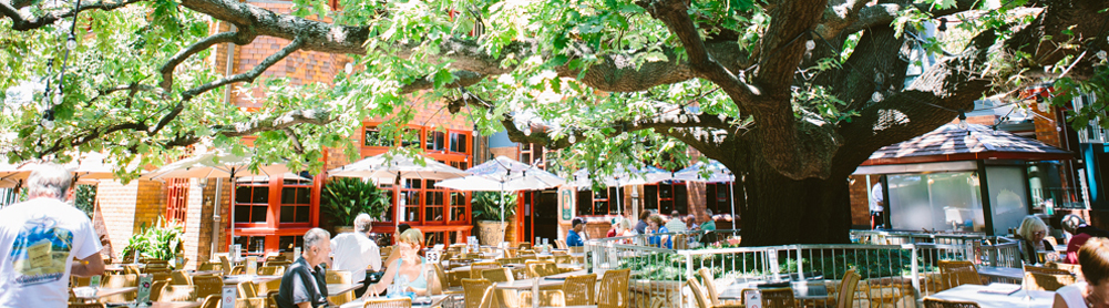 The hotel was opened in 1885. The garden is shaded by a magnificent Oak tree, planted in 1938.
