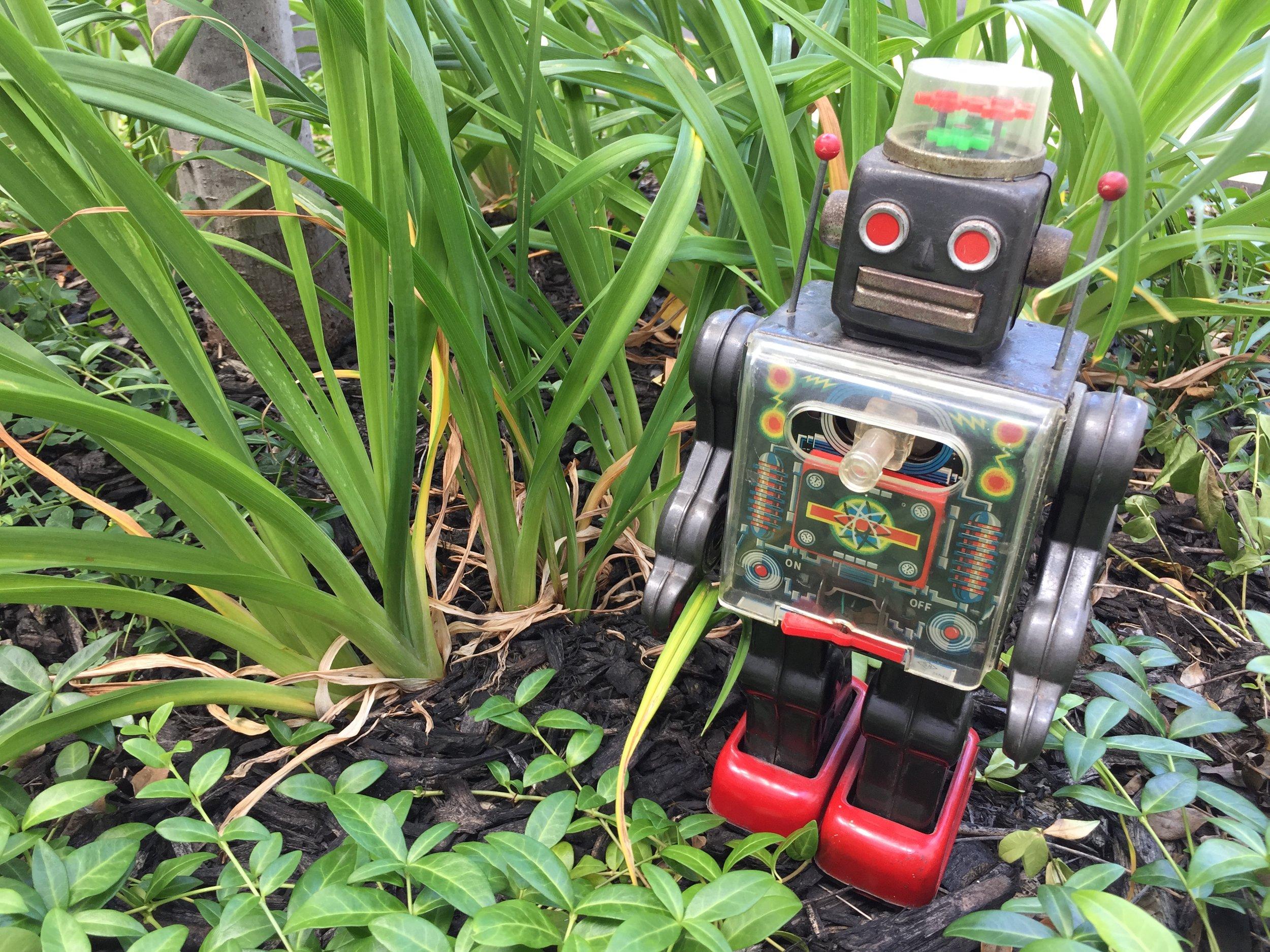 A portrait of the author as a robot