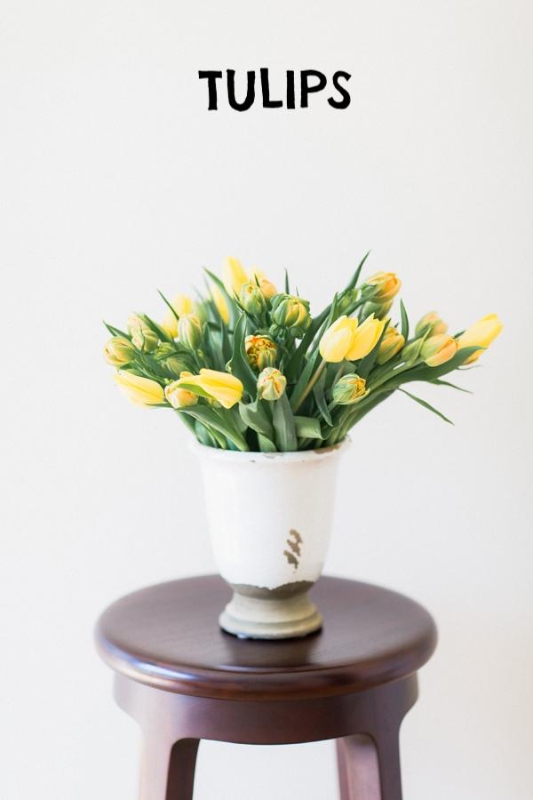 yellow-tulips.jpg