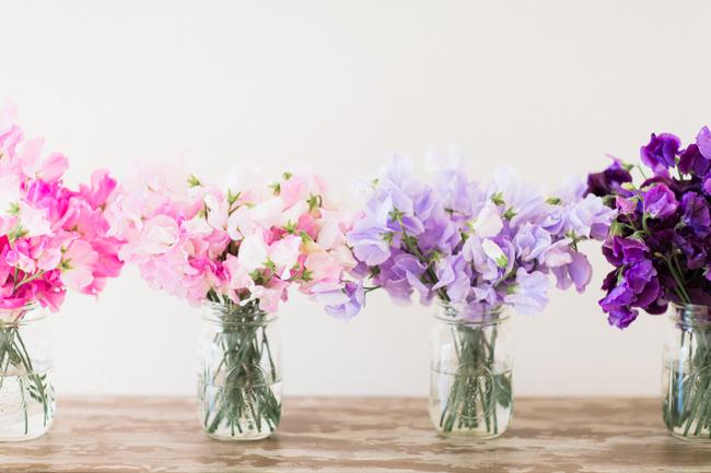 flower-guide-3.jpg