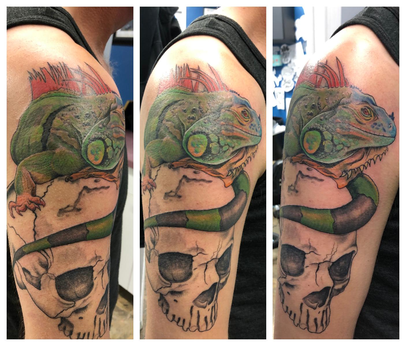 Lizard.Skull.2.jpg