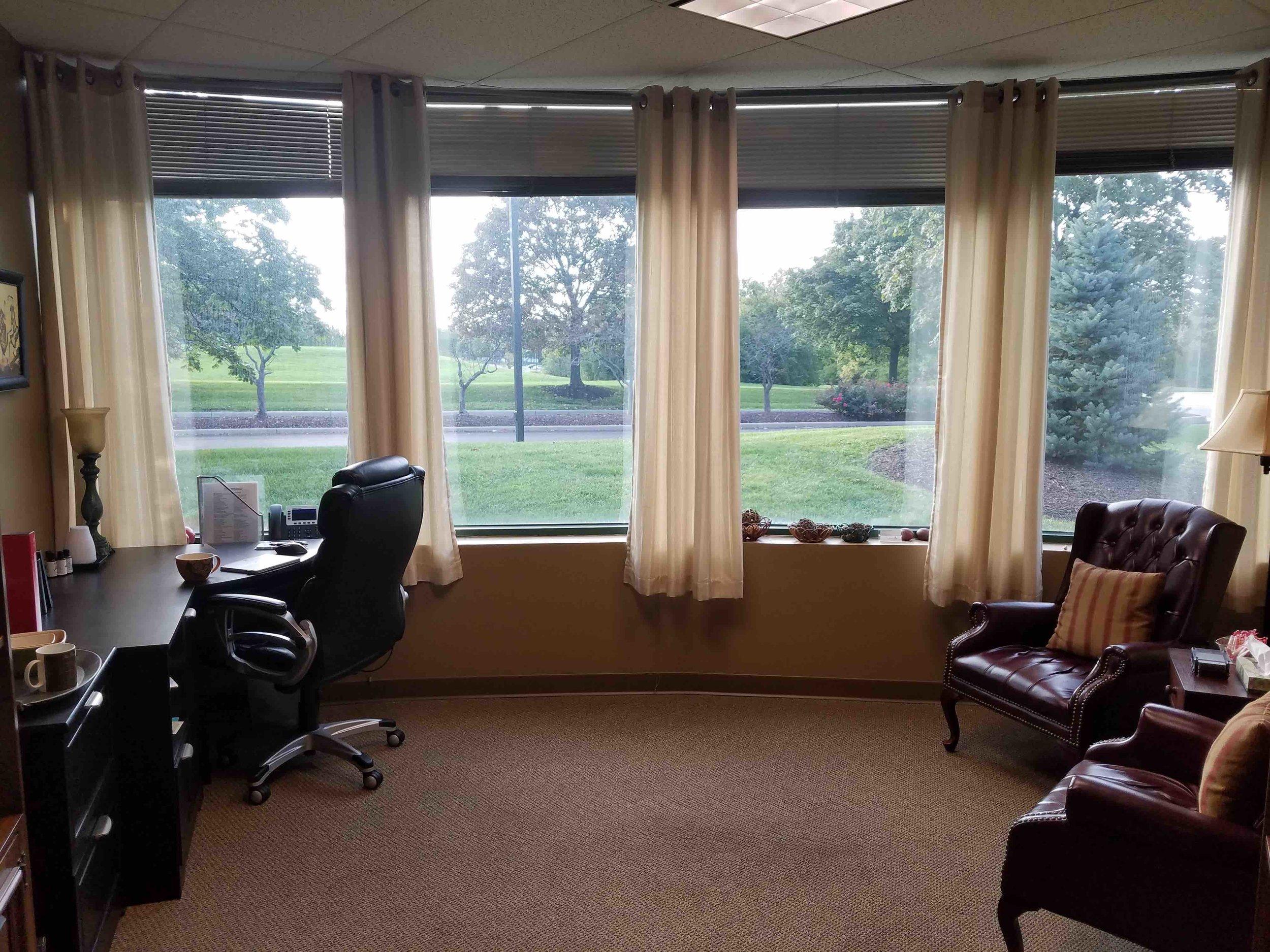 Counseling Alliance LLC - Jordan's Office.jpg