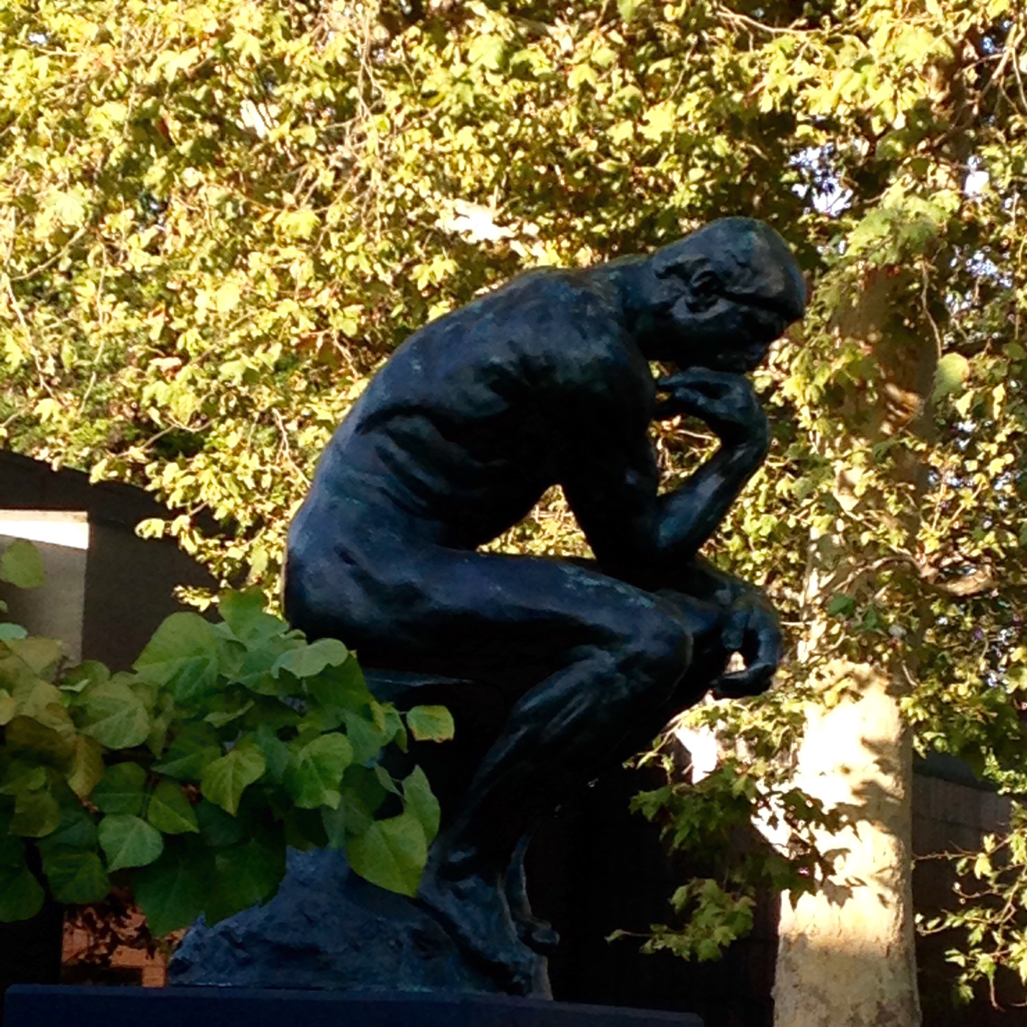 If you meander outside to the grounds of the museum facing Colorado Blvd, you'll be rewarded by Rodin's bronze, The Thinker. At the Norton Simon, it's Edition of 12, Cast No. 11.