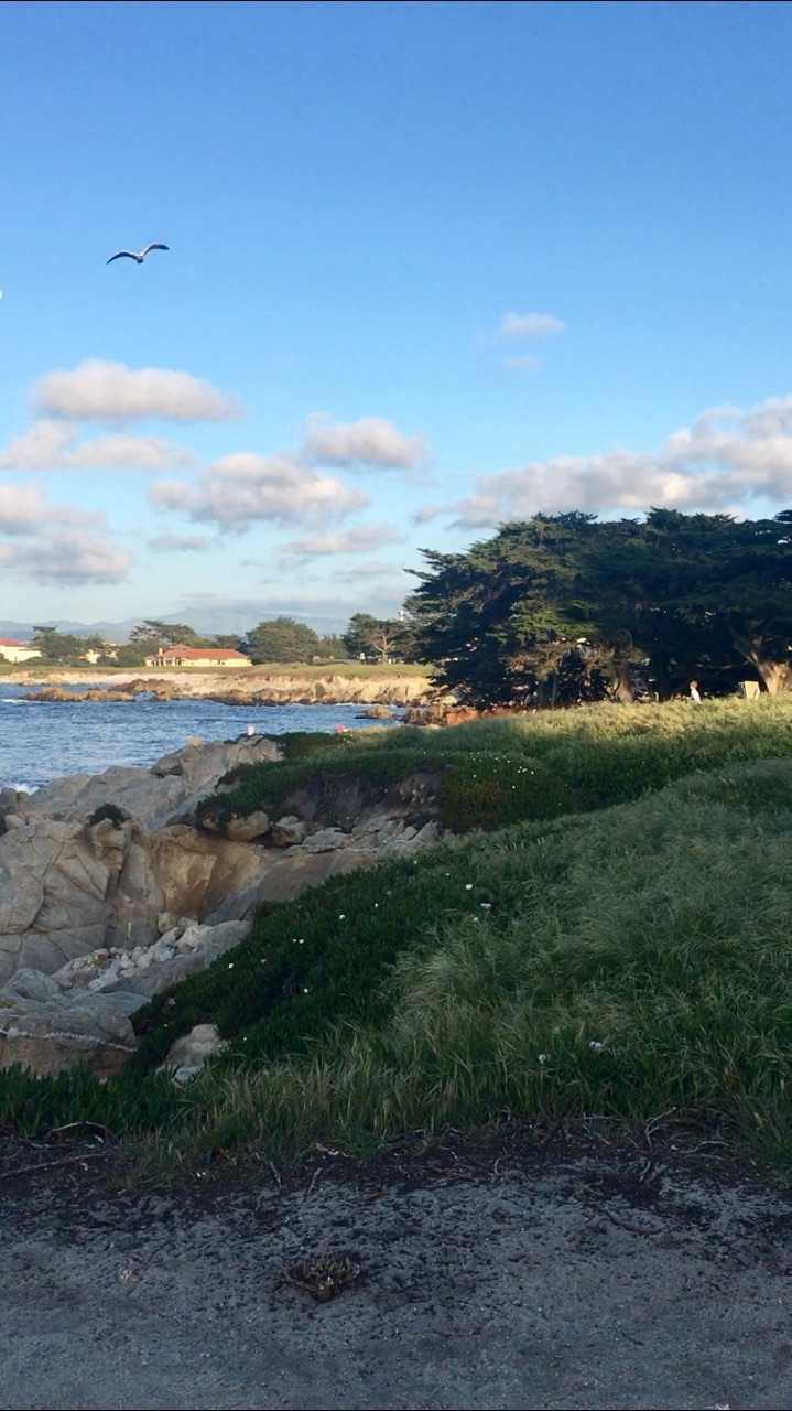 Monterey Bay Trail (1).jpg