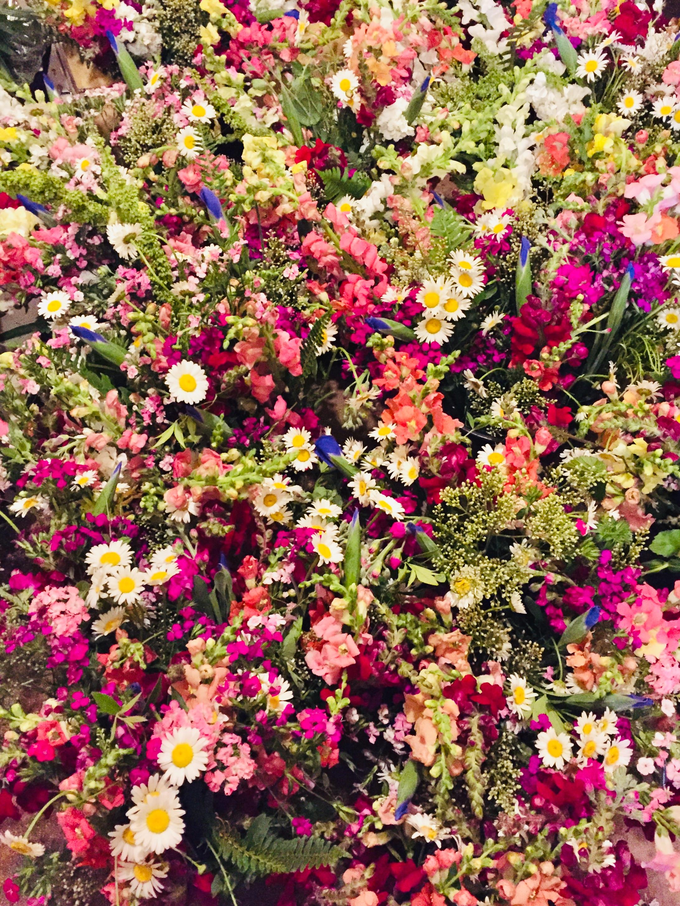 Bulk Flower Bounty
