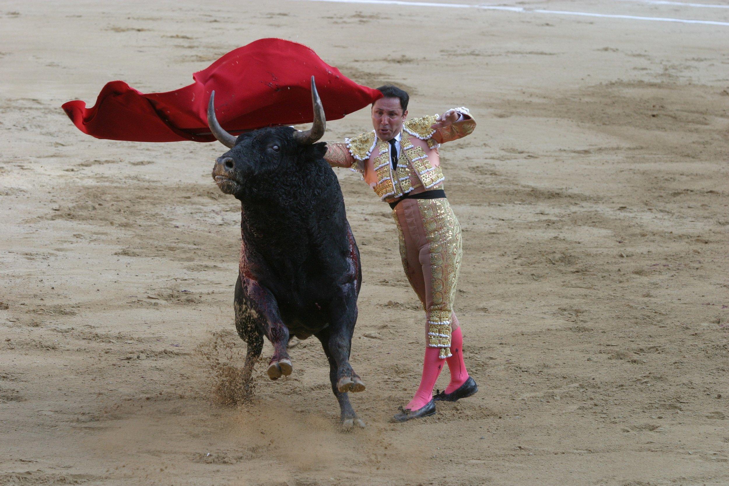 matador-786657.jpg