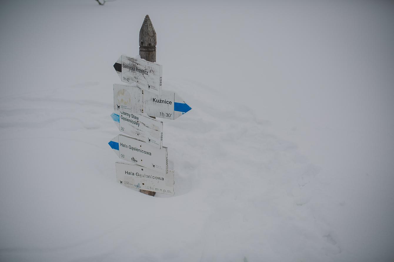 0169-skitury-Tatry-rodzice-edukacji-domowej.jpg