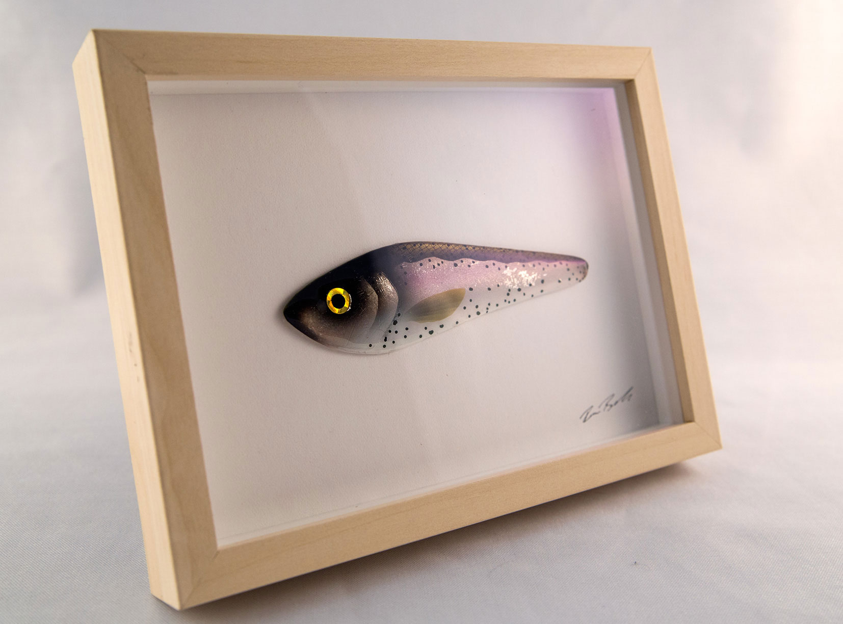 Little Fish  more than 6 different FISH are available. If you are interested in more details, please contact me