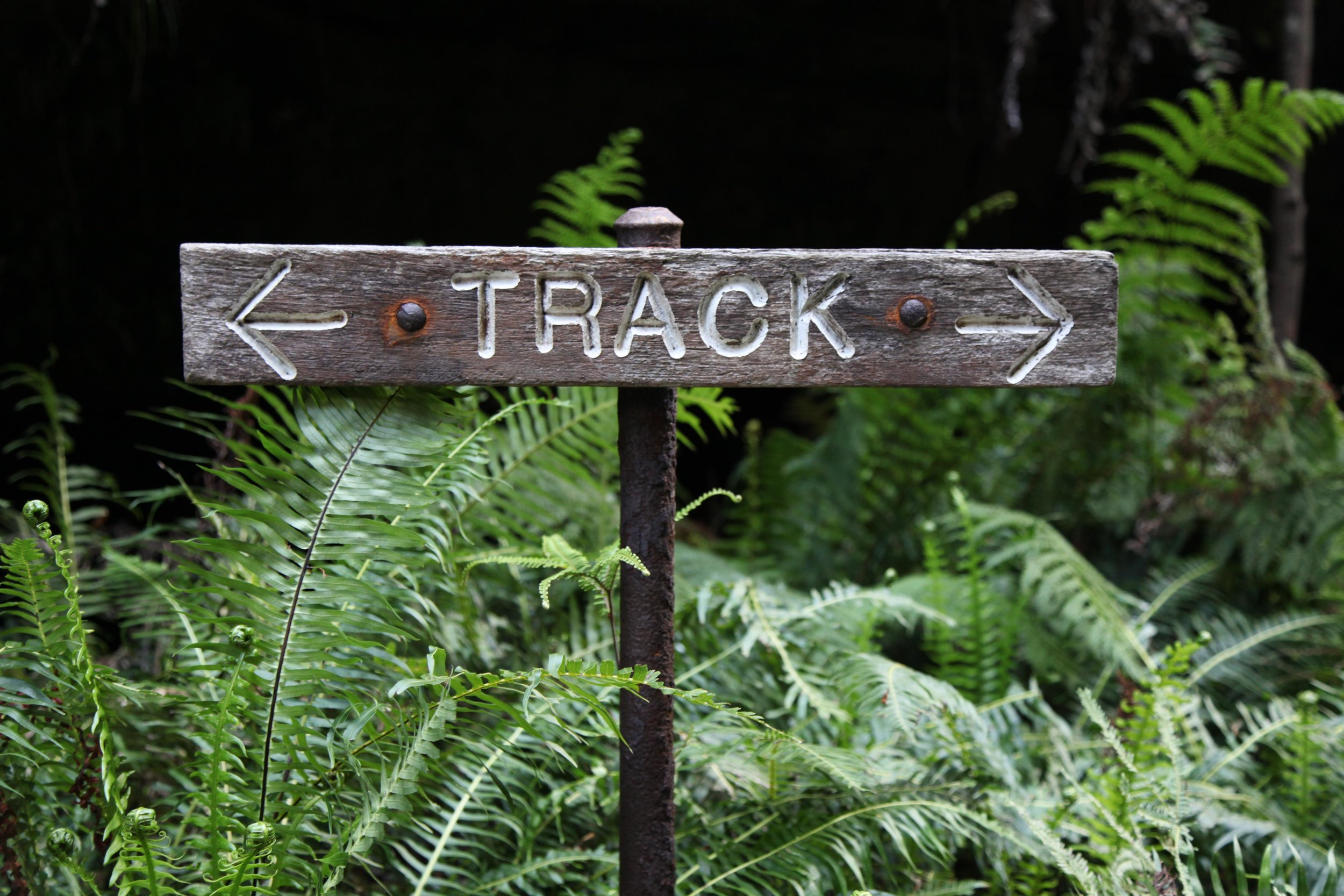 Track sign on the Grand Canyon loop walking track in the Blue Mountains National Park.