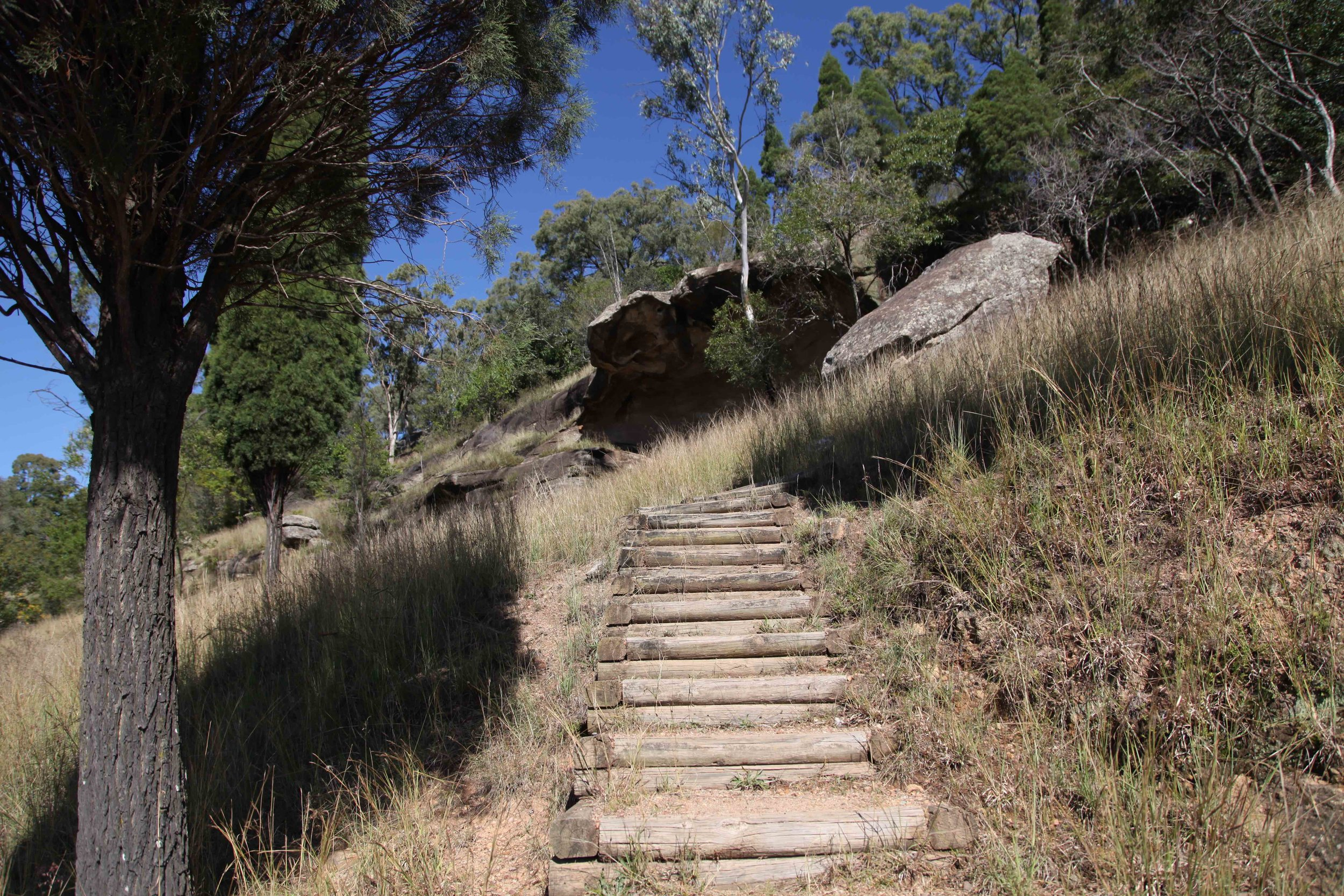 The walk up to Baiame Cave at Milbrodale in the Hunter Valley.