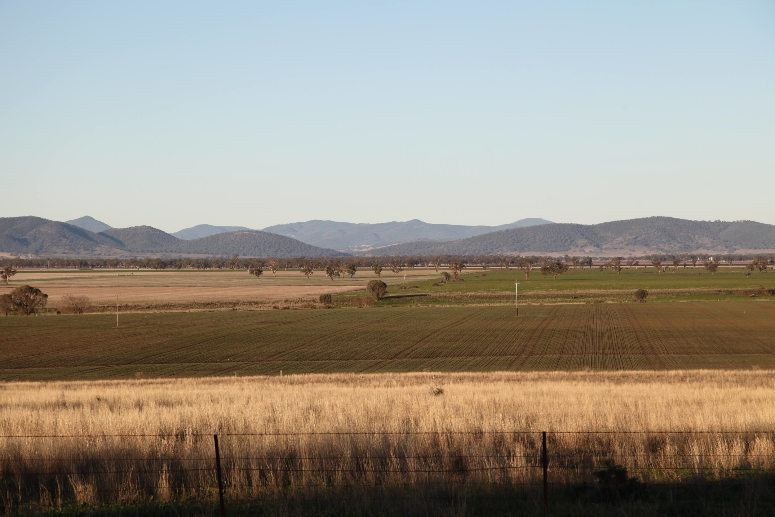 Afternoon light over farm land between Caroona and Breeza on the Liverpool Plains.
