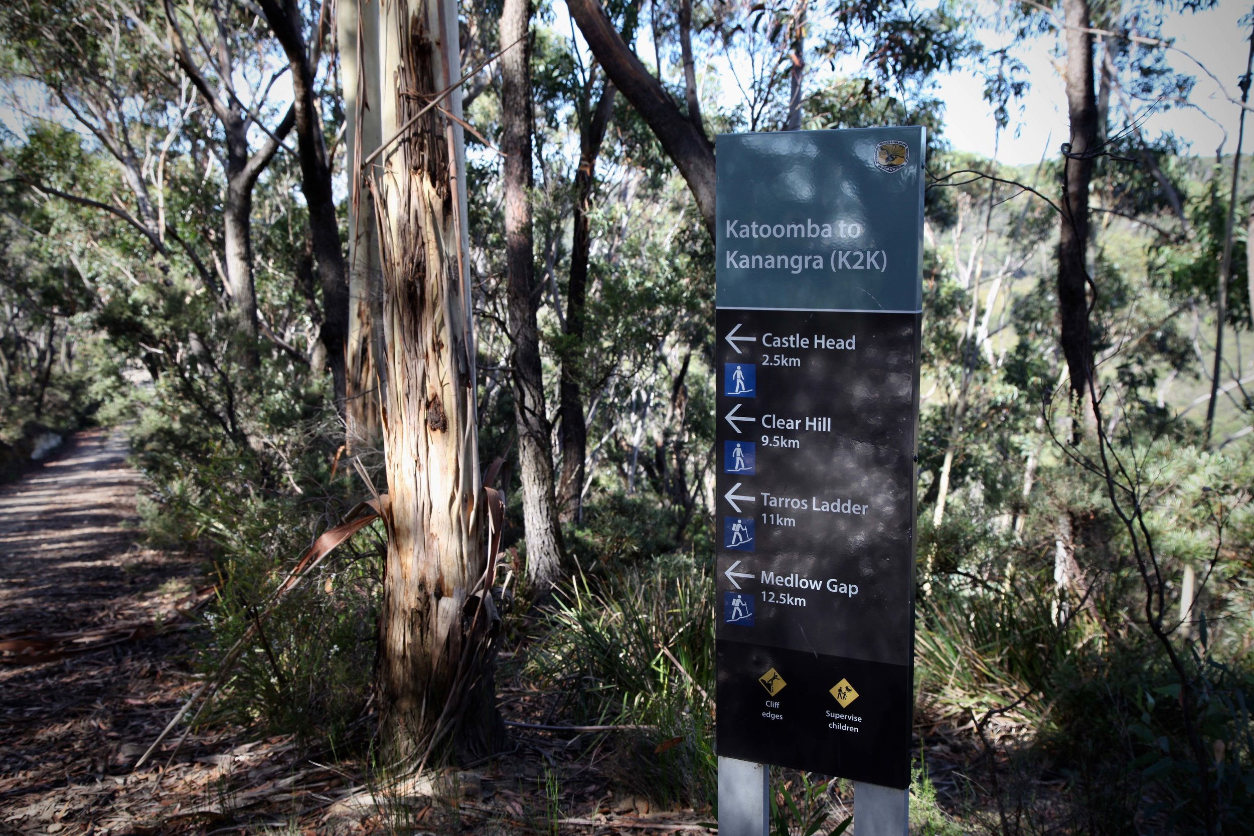 From Narrow Neck you can walk the length of the plateau, or join a number of other walks.