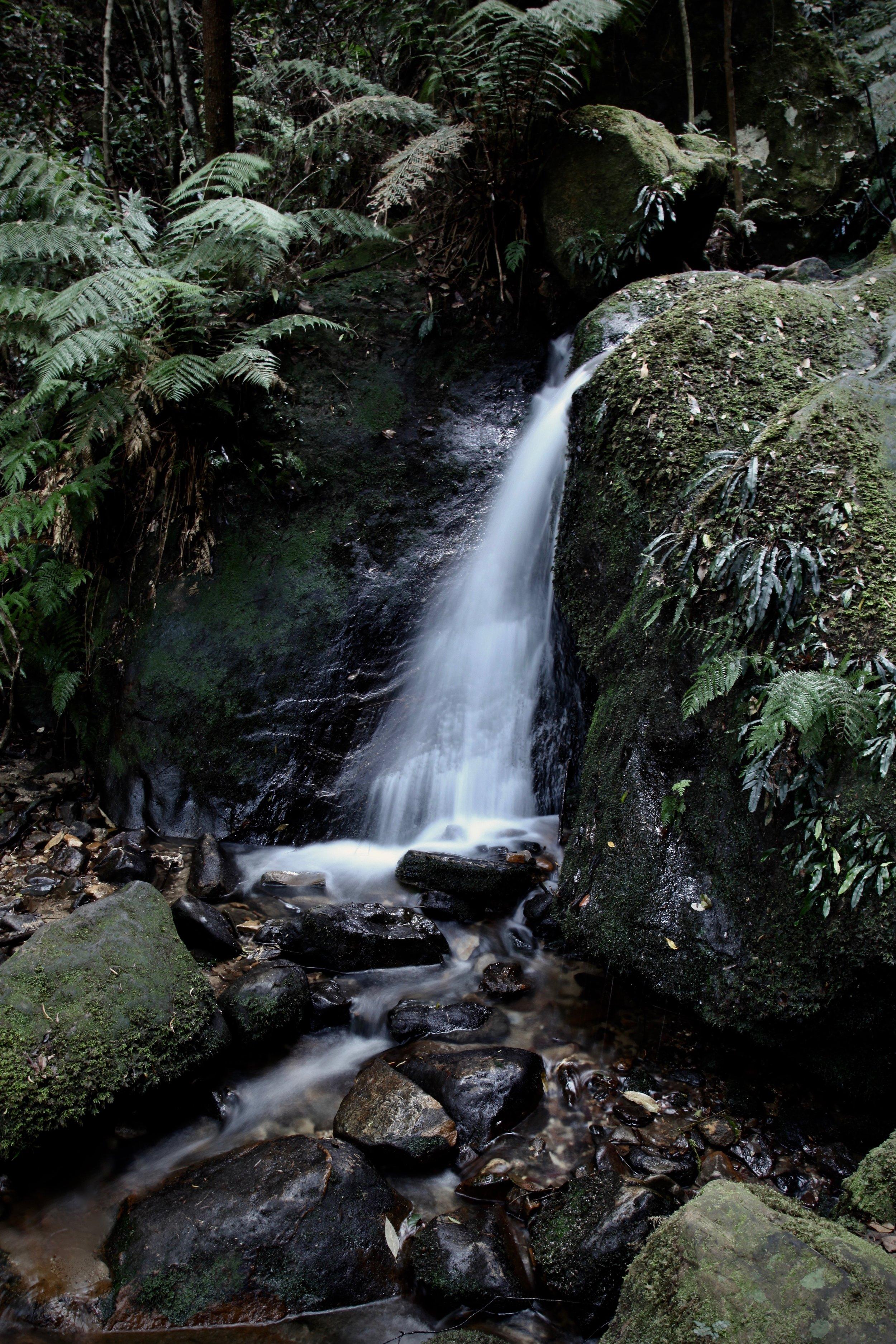 A tiny cascade at Leura.