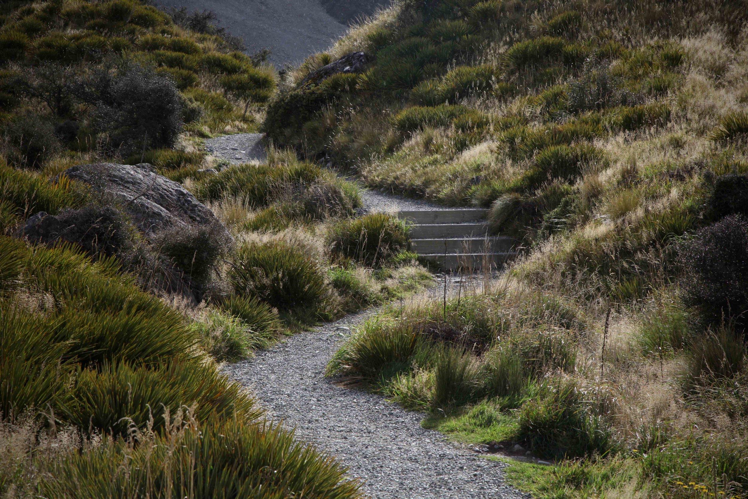 tasman-glacier-track.jpg