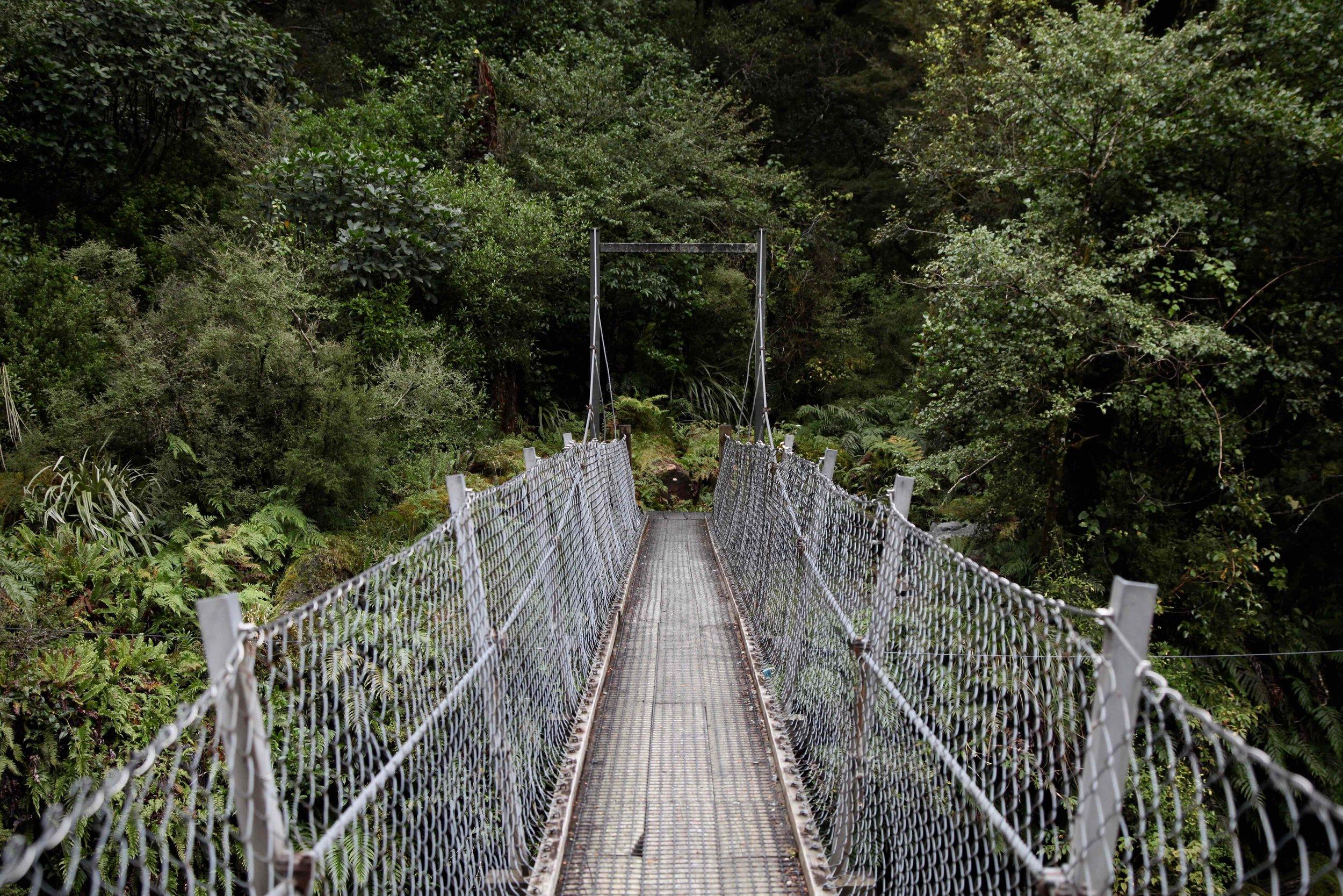 swing-bridge-lake-marian-track-fiordland.jpg