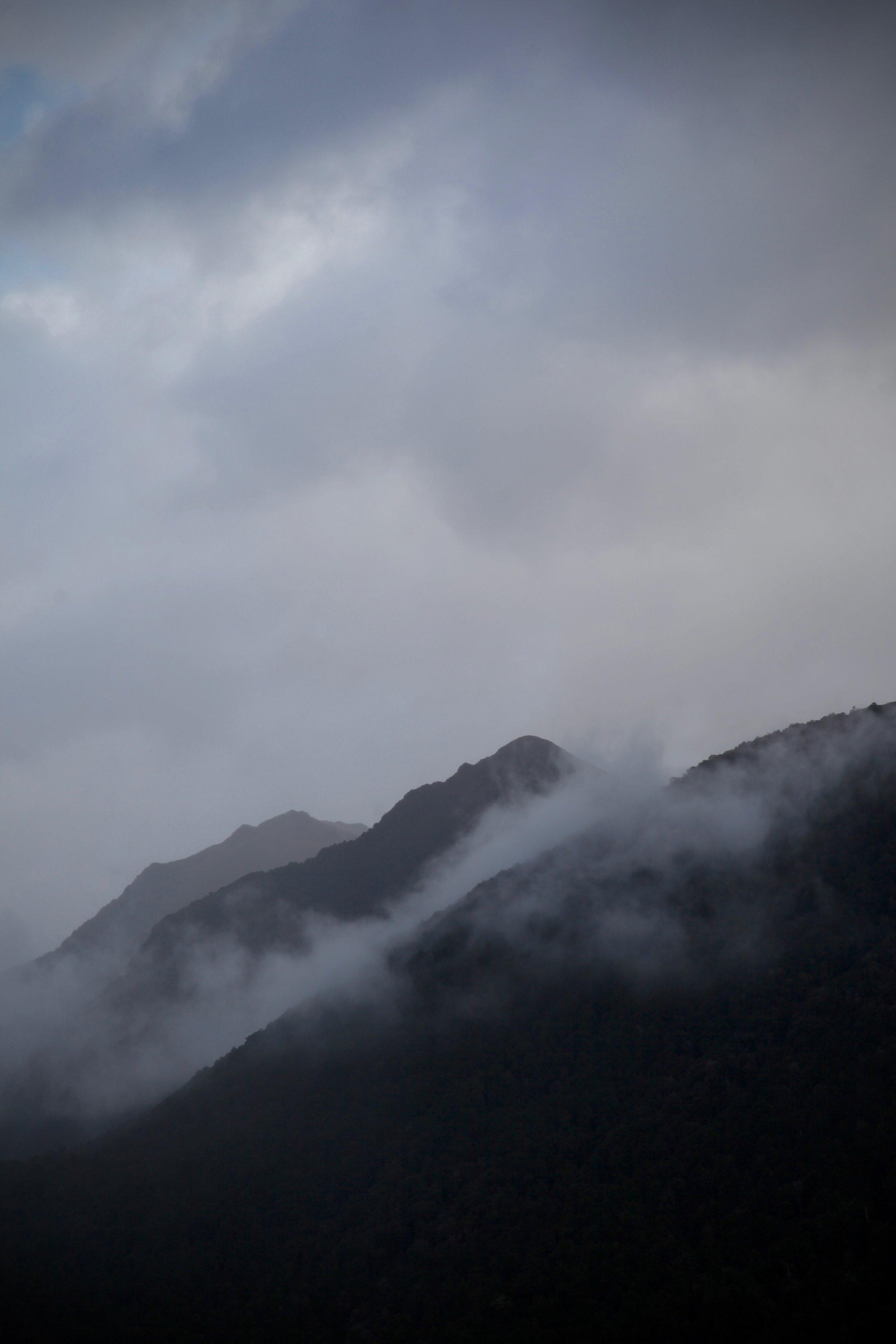 fiordland-new-zealand.jpg