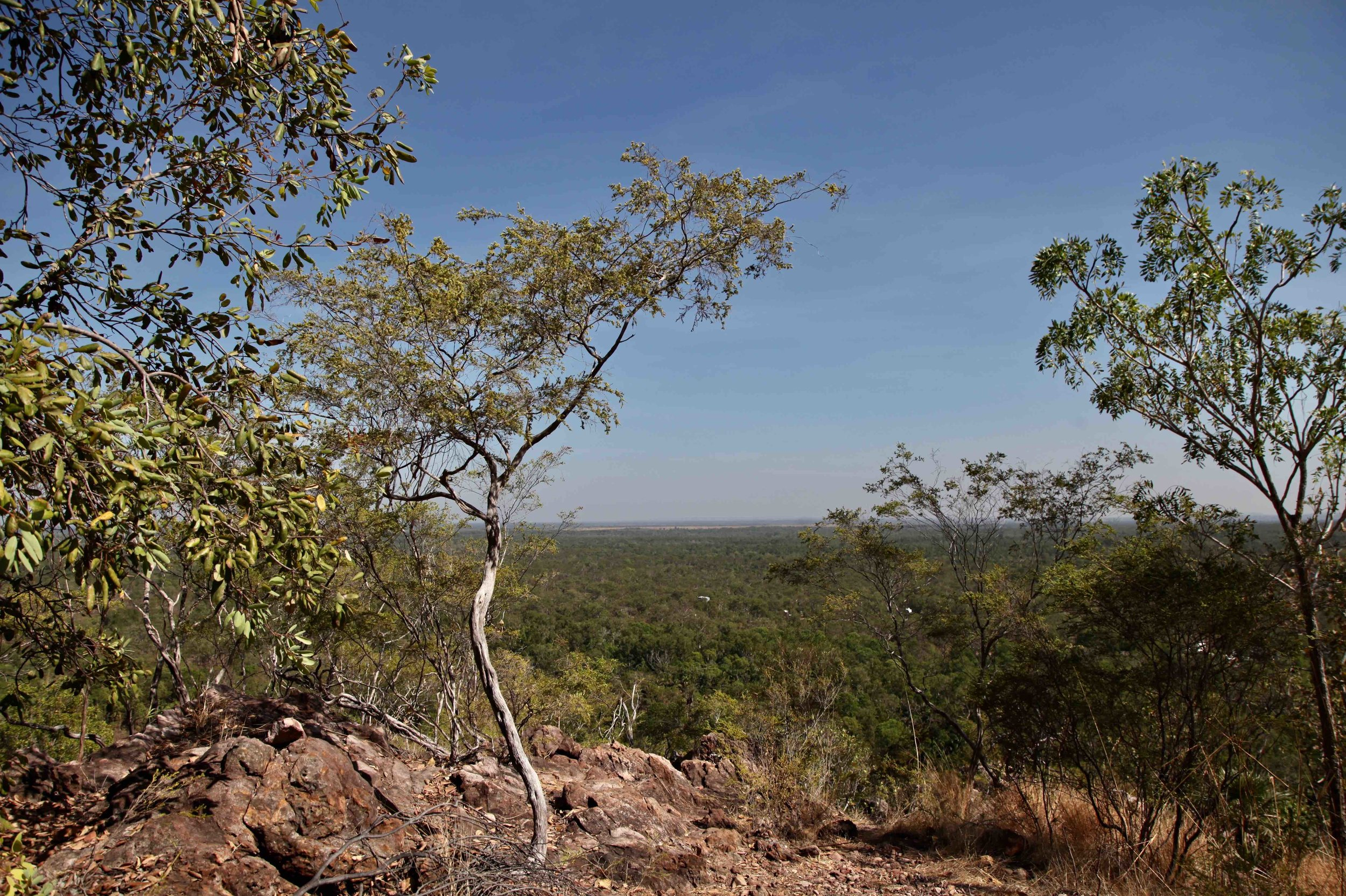 The view across Litchfield National Park from the Wangi loop track.