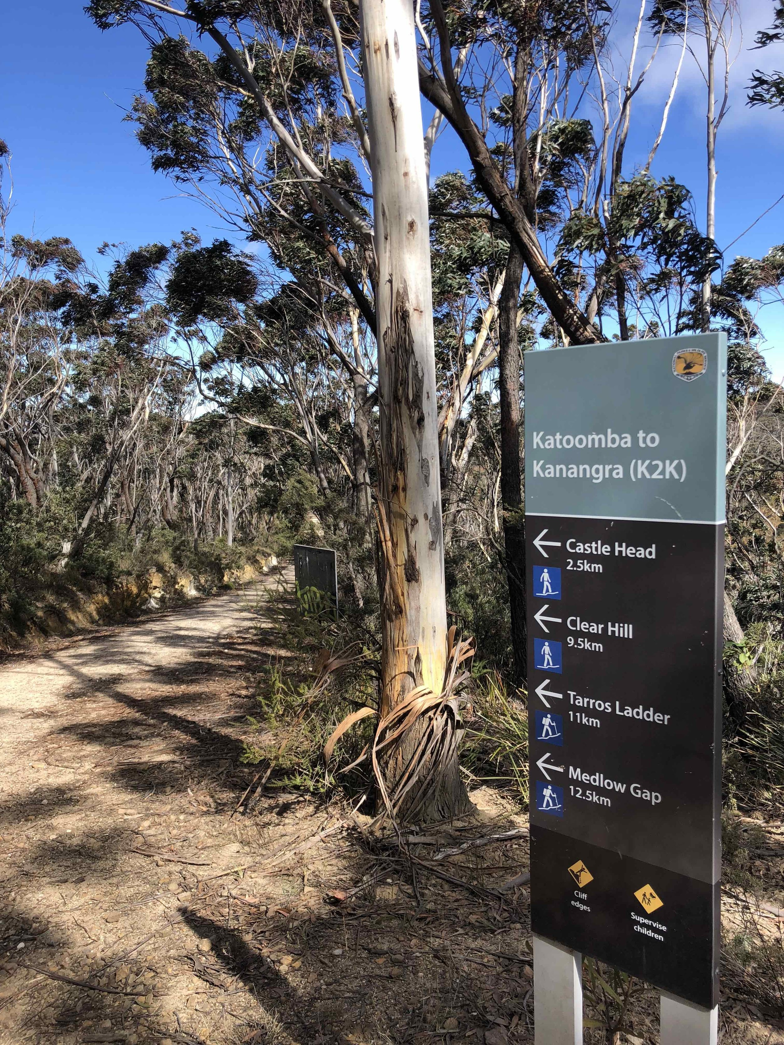 Lookout for the NSW Parks track signs on Narrow Neck Plateau.