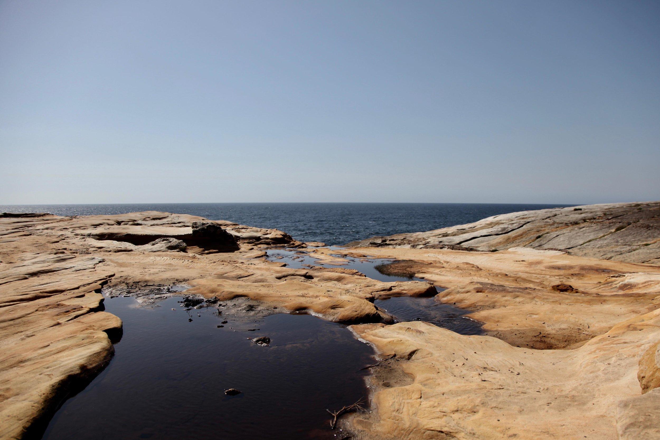 ocean-sydney-coast-track.jpg