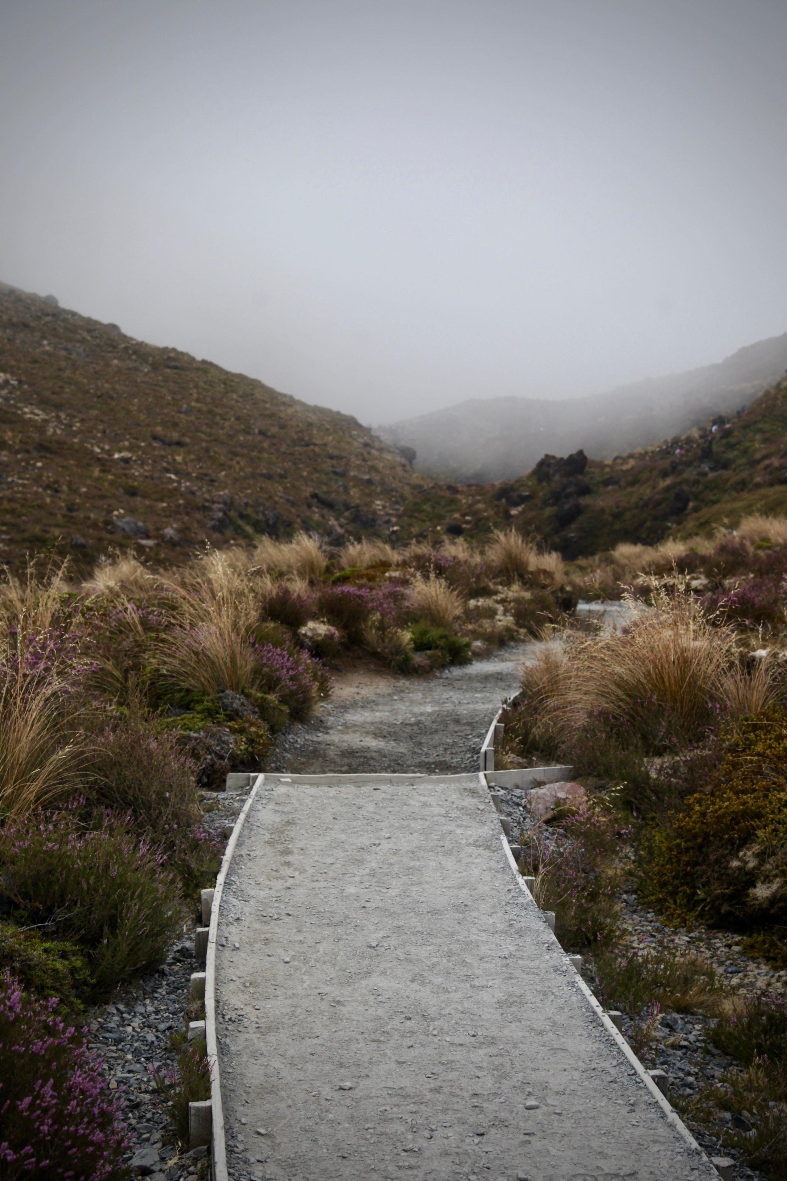 tongariro-alpine-walk.jpg