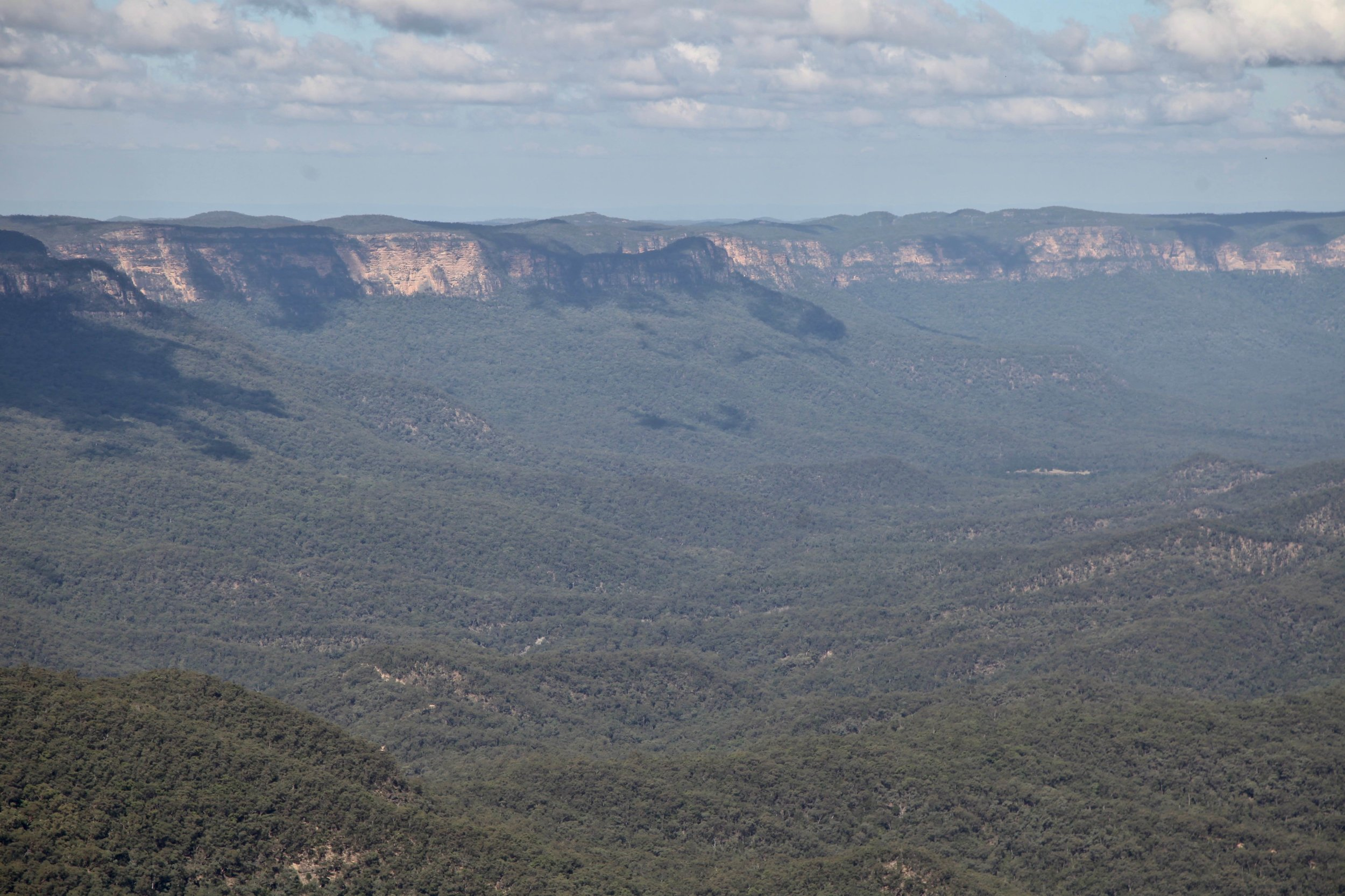 The Prince Henry Cliff walk offers easy access to sweeping views of the Jamison Valley.