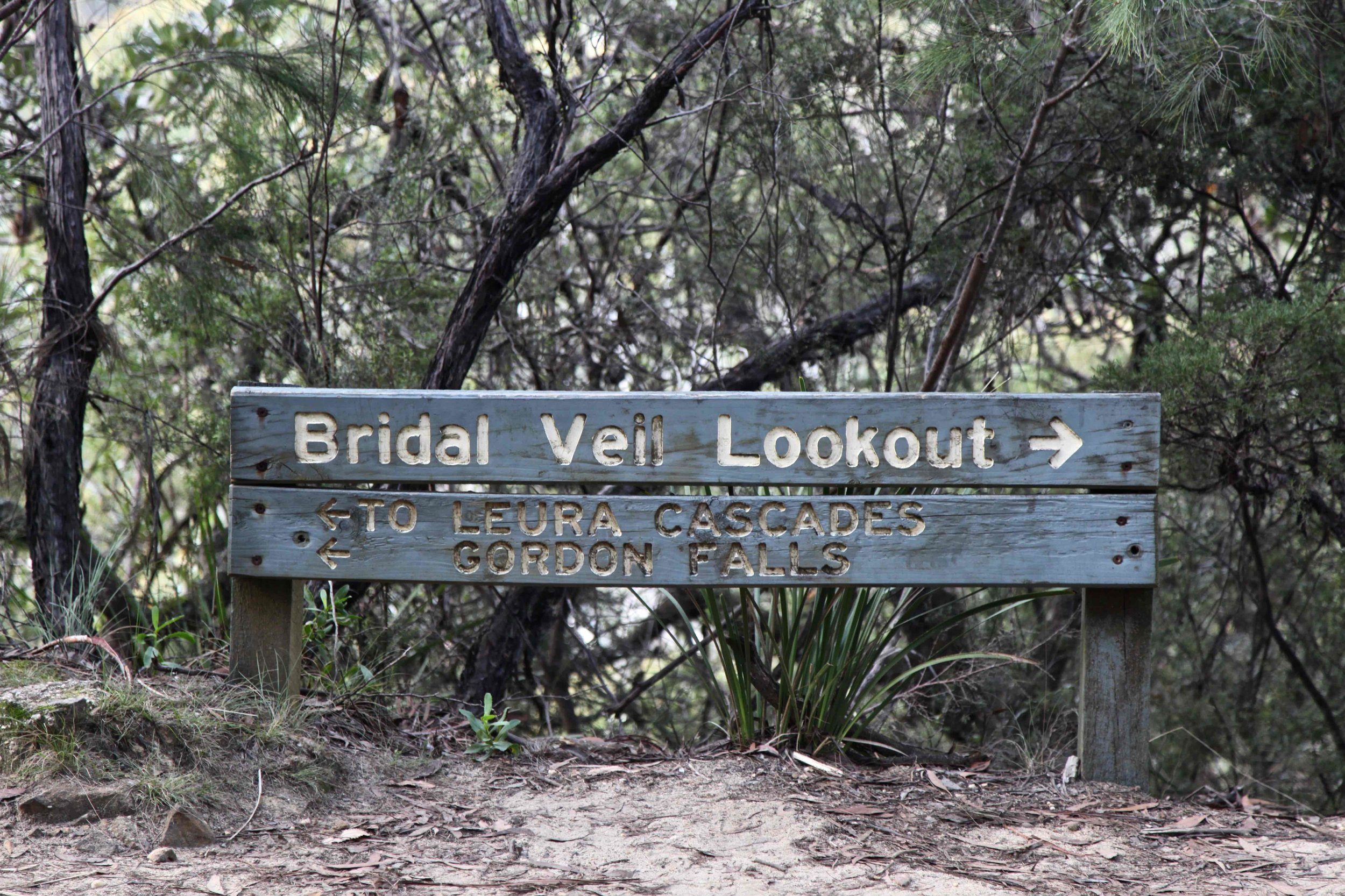 You can spend time at more than 20 lookouts along the track between Katoomba and Leura.