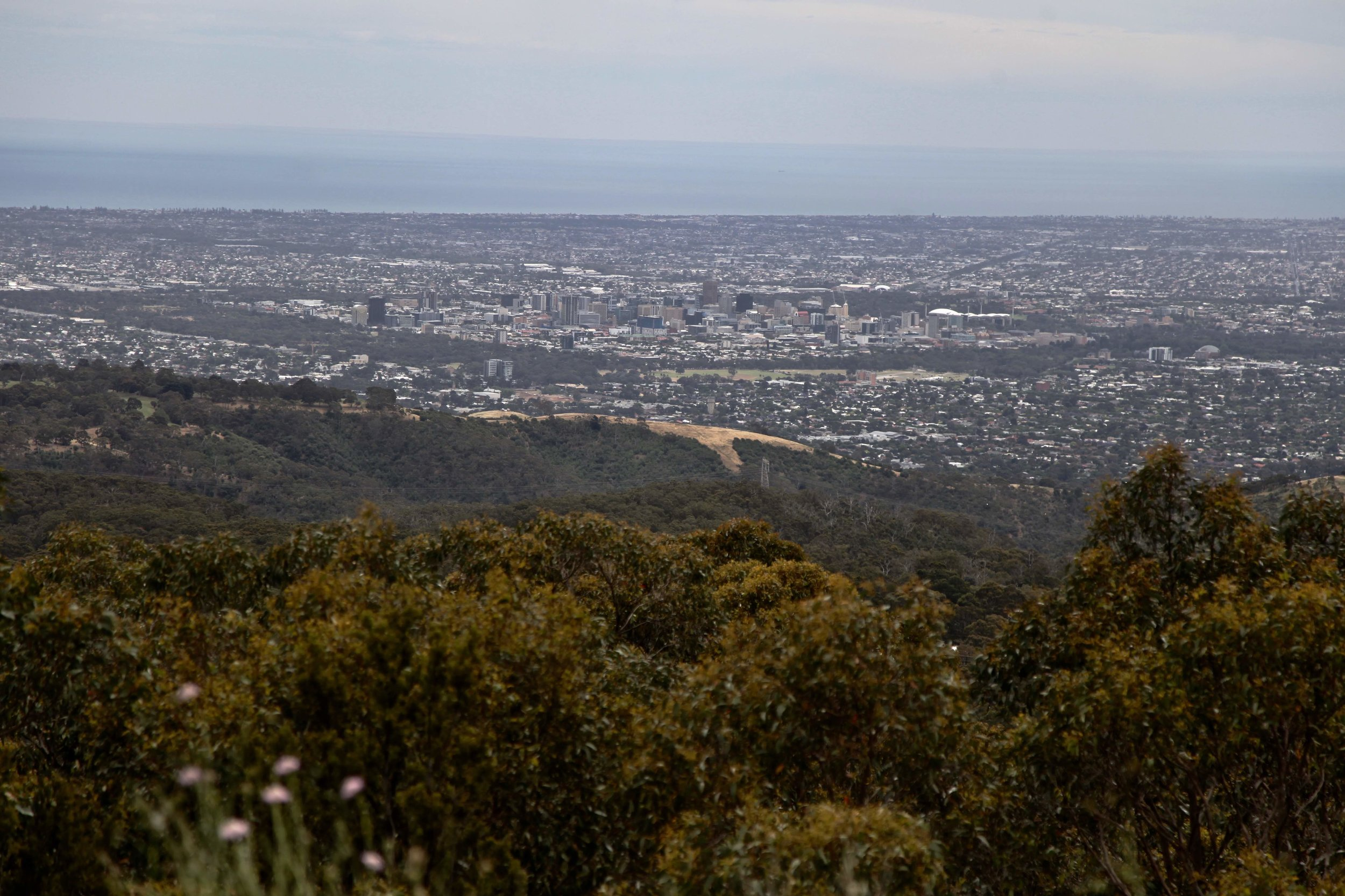 The view over Adelaide from Mt Lofty summit.