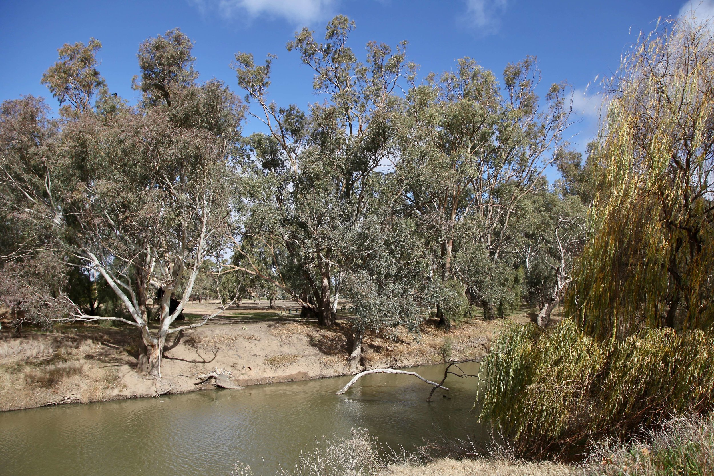 The Lachlan River is the fourth longest river in Australia at 1339km.