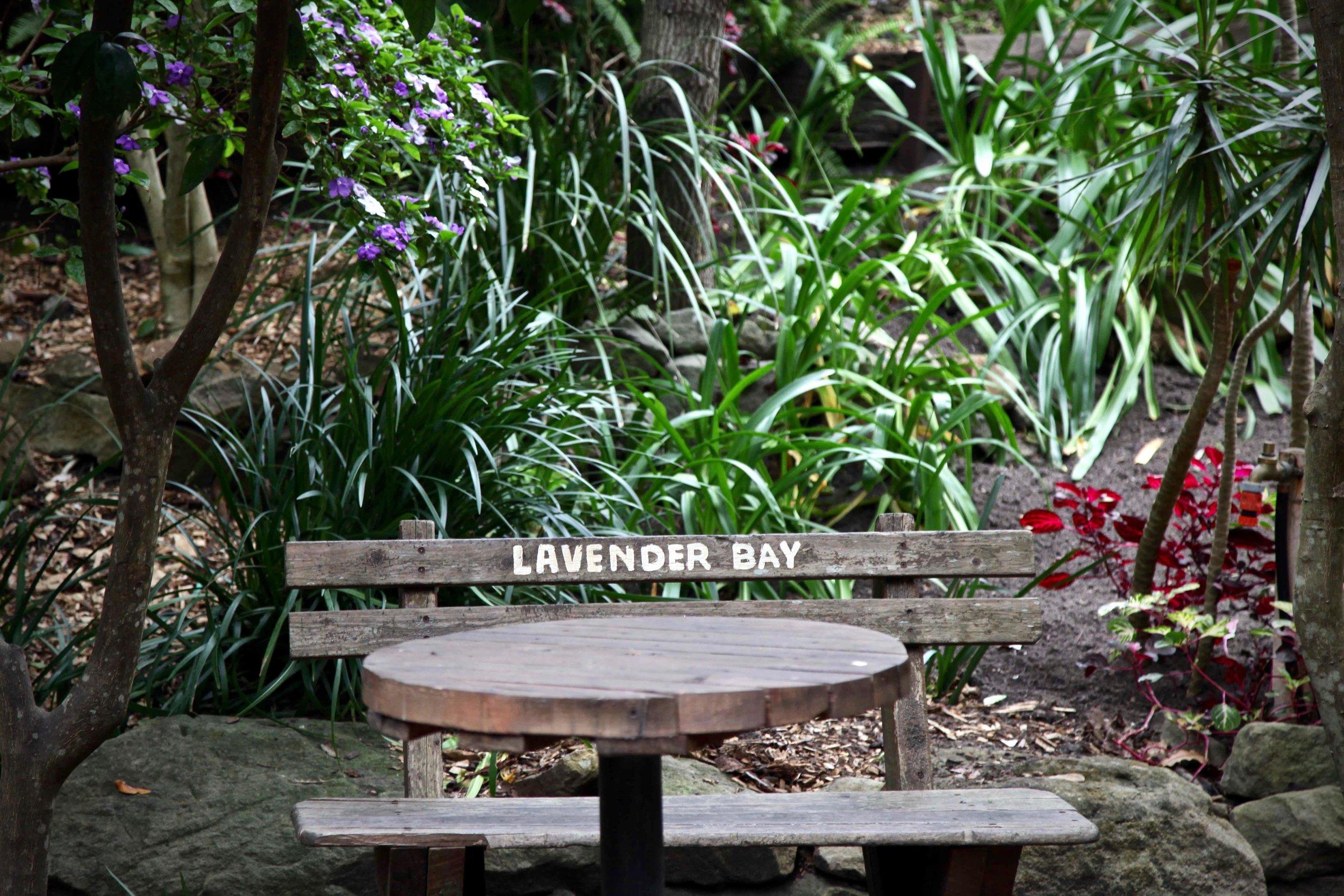 Wendy's not-so-secret garden at Lavender Bay.