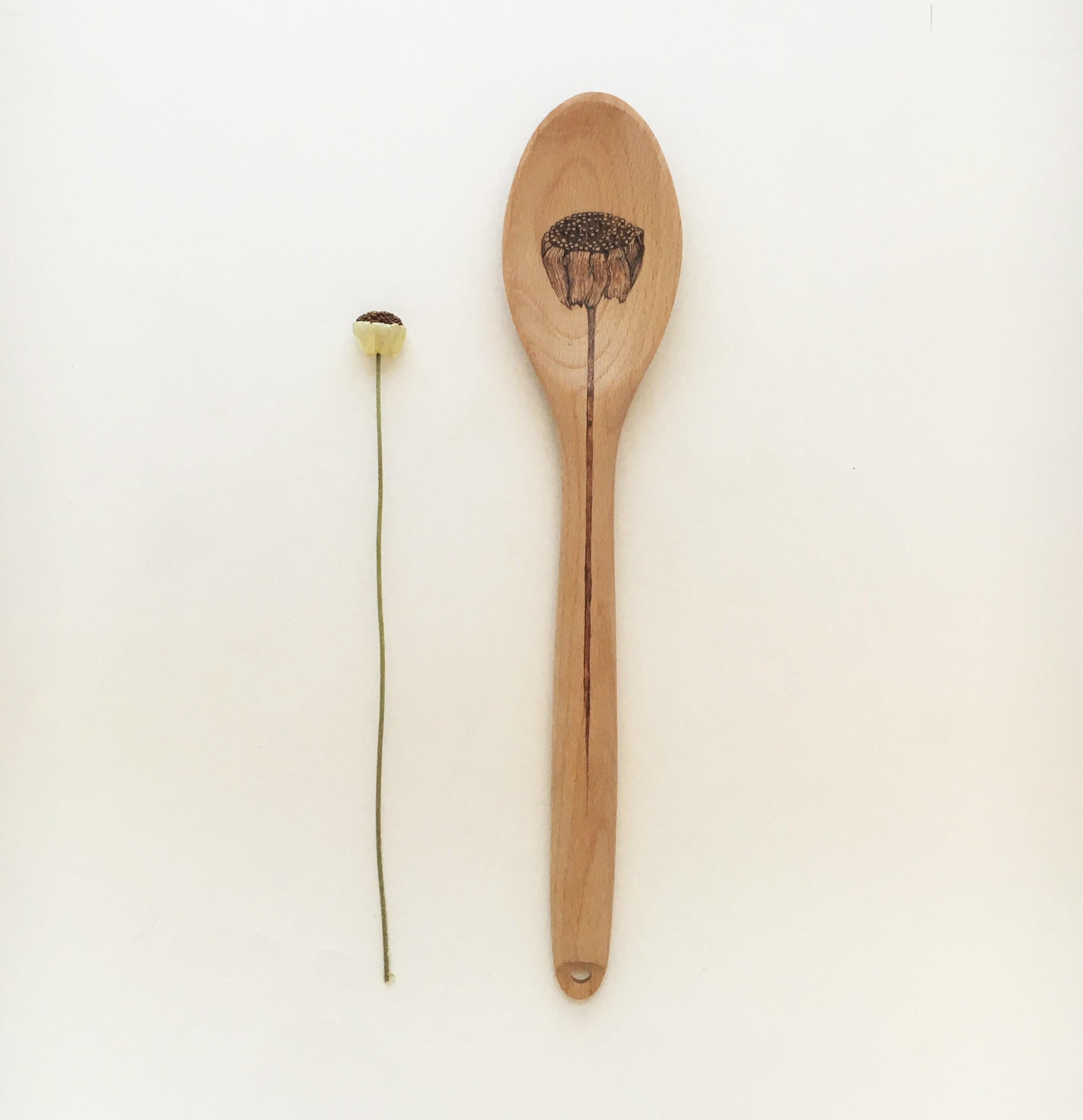 04. WildFlower  Beech Wood Spoon.jpg