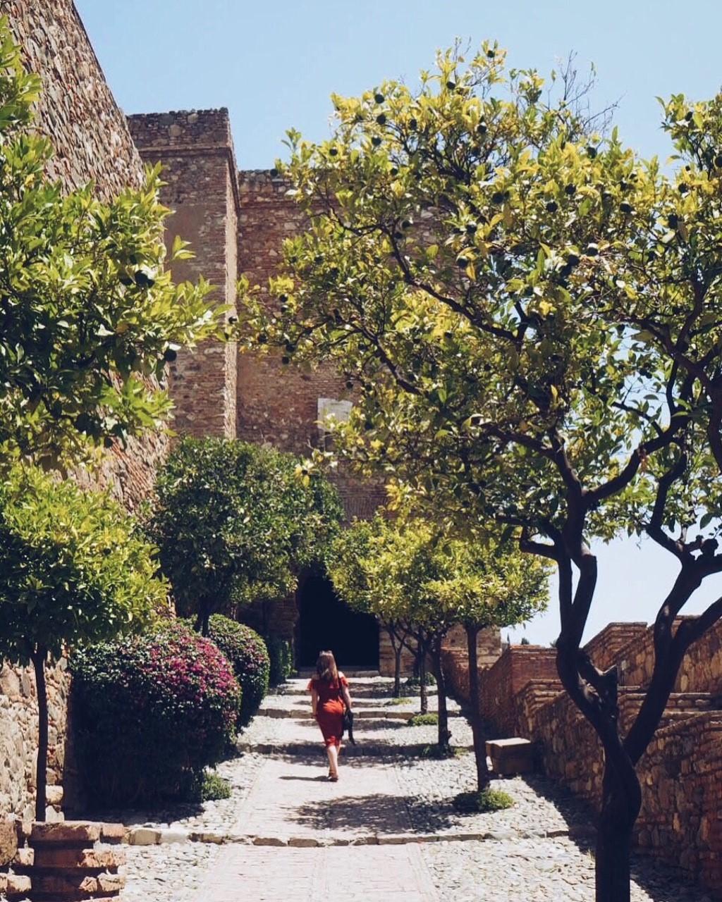 Alcazaba Gardens, Malaga.