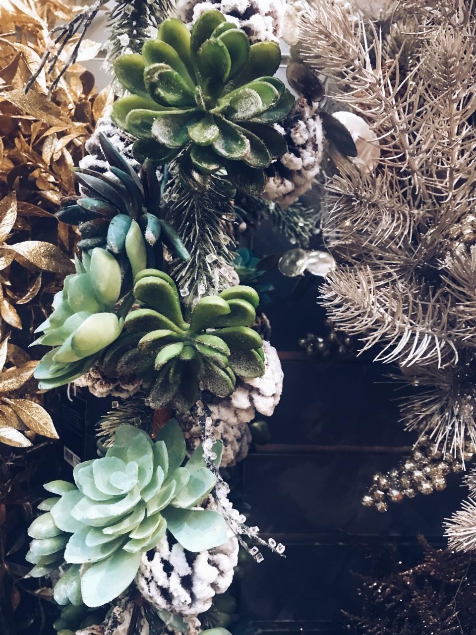 Succulent Garland