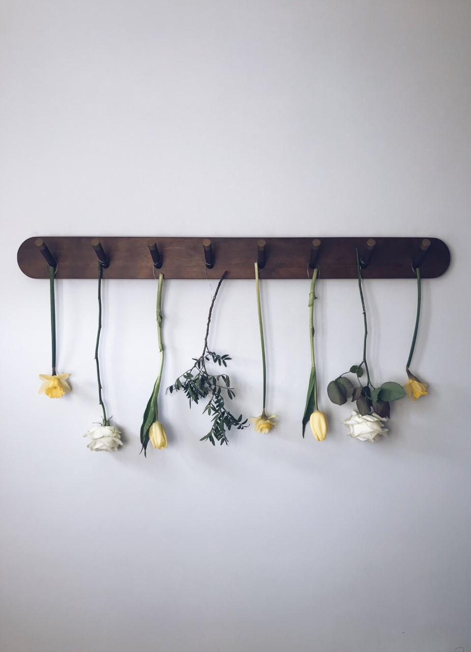 Freddies Flower Collaboration