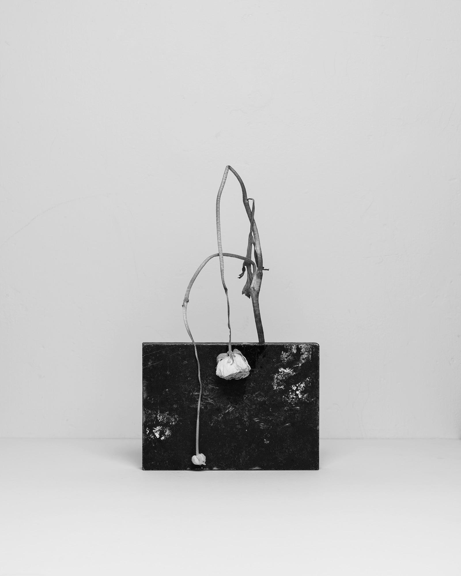 Studio — Gabriela Silveira | Photography