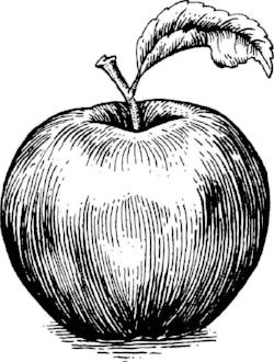 apple logo b&w.jpg