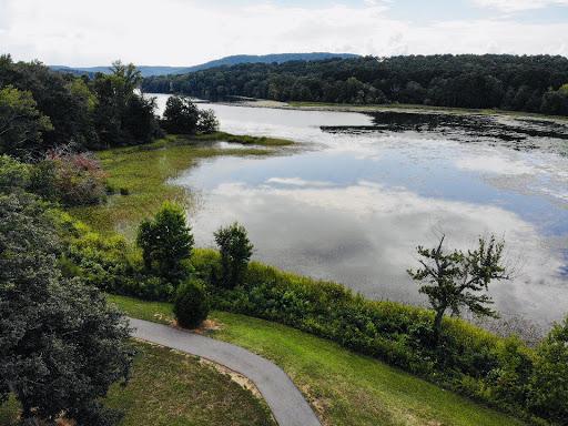 Goose Pond Colony3.jpg