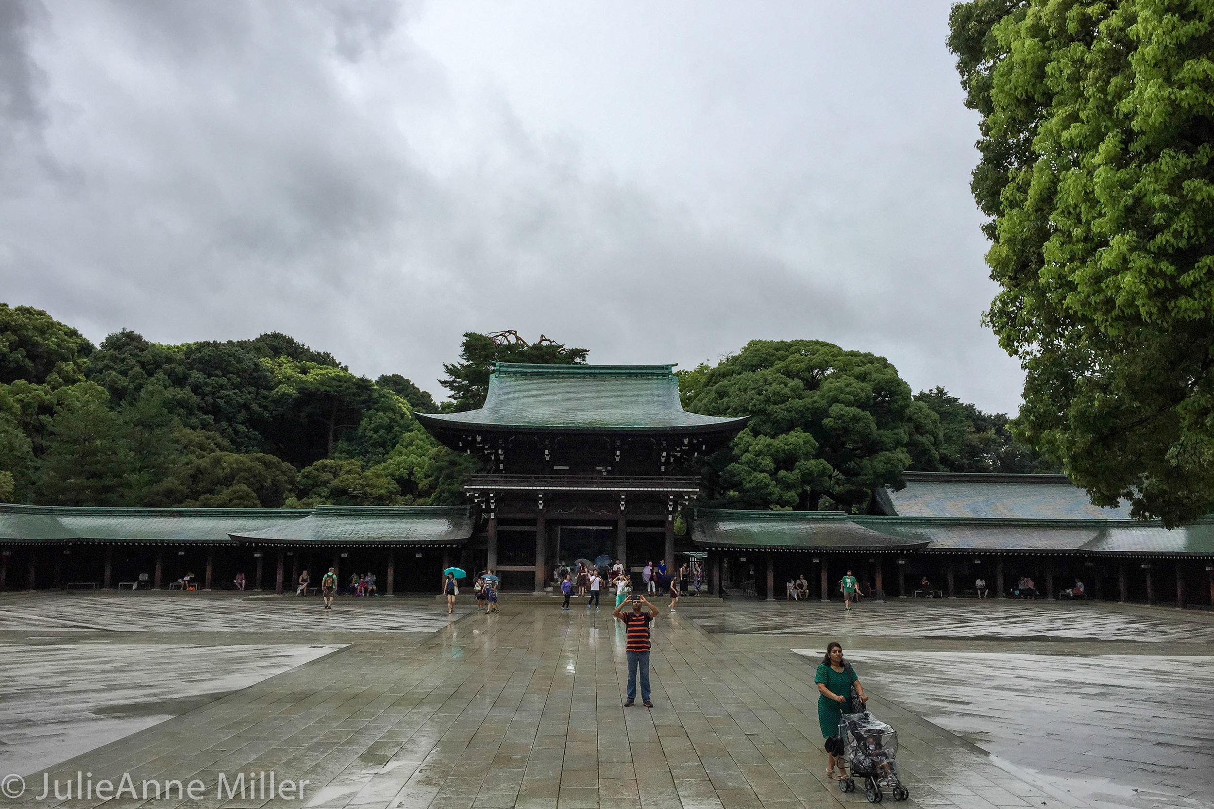 Meiji Jingū (明治神宮)