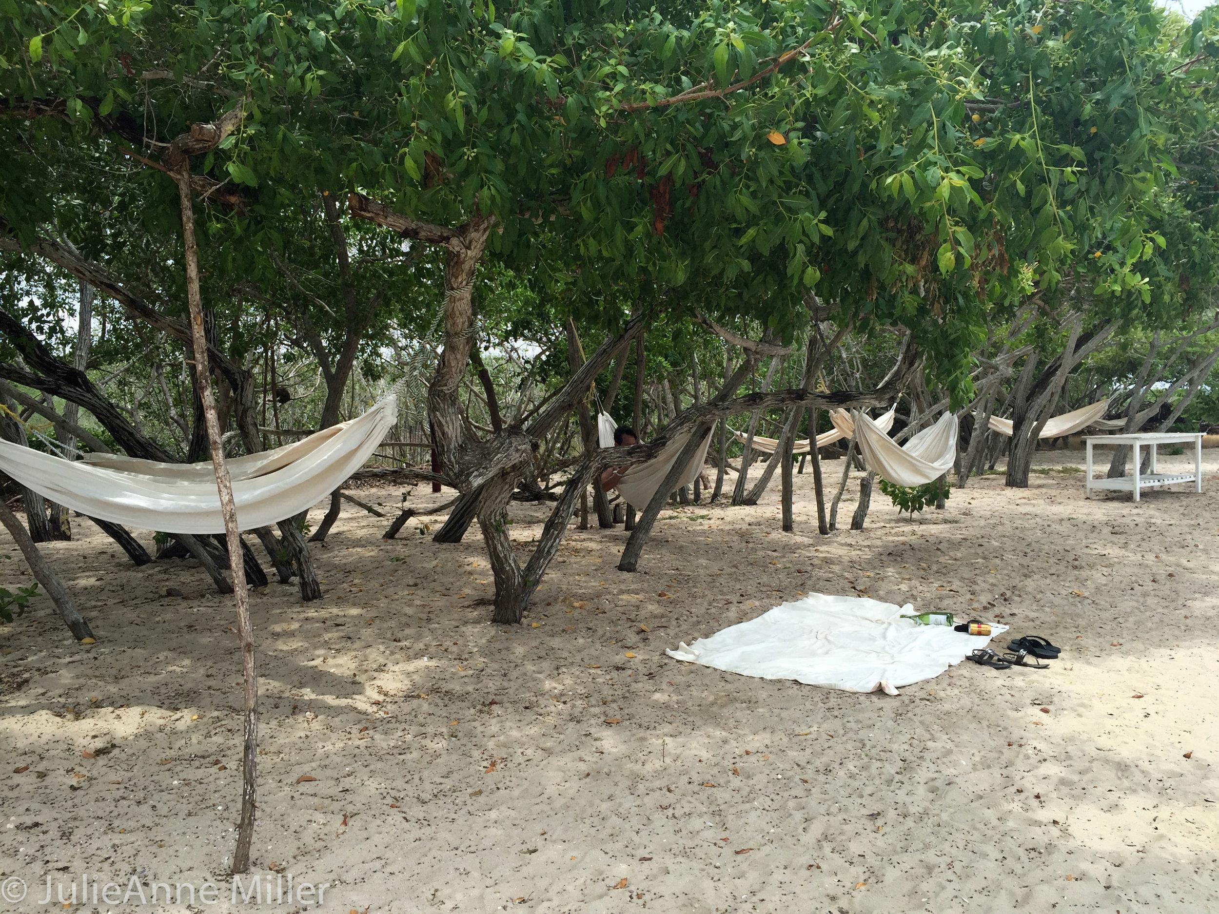 hotel maglares hammocks.jpg