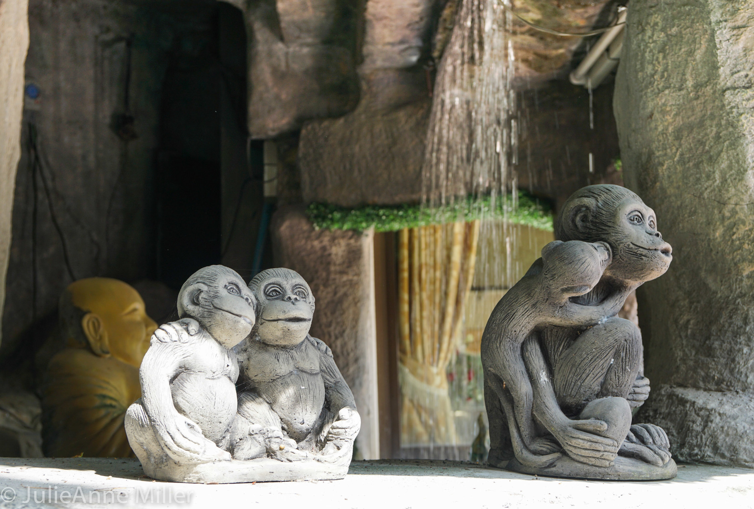 Wat Saket monkeys 2jpg.jpg