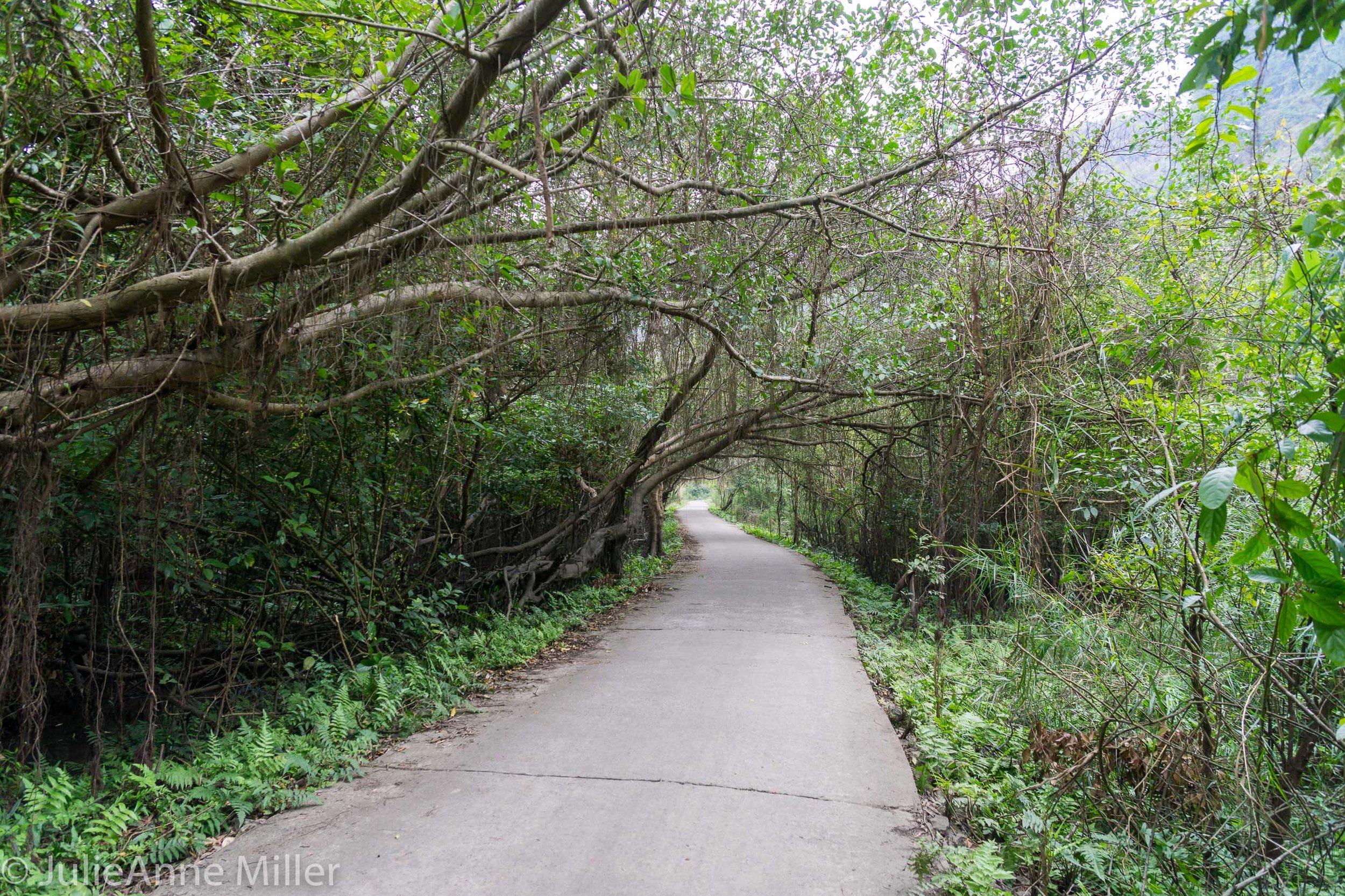 Viet Hai Village Road