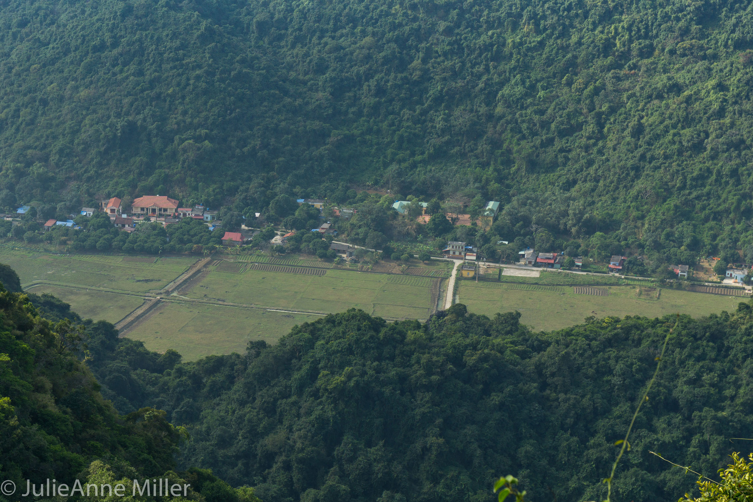 aerial view of Viet Hai