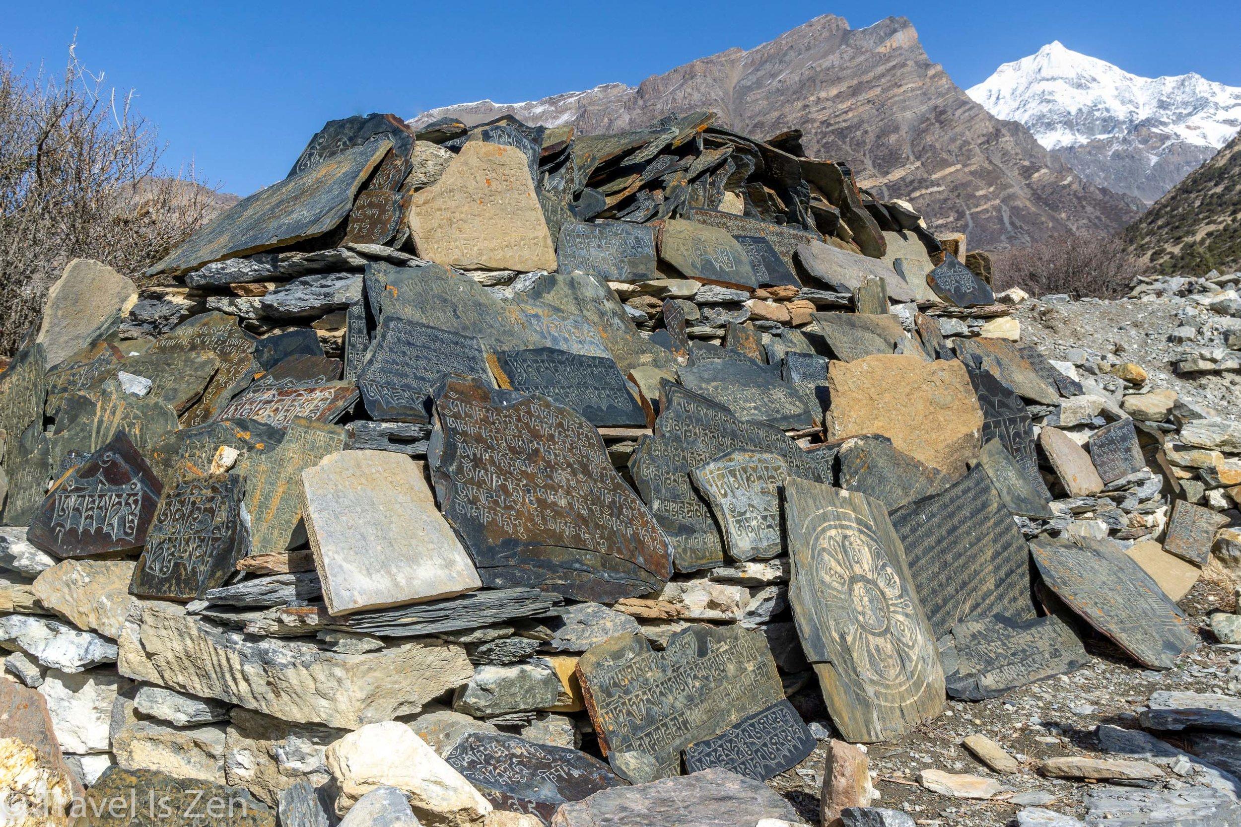 Annapurna Circuit-55.jpg
