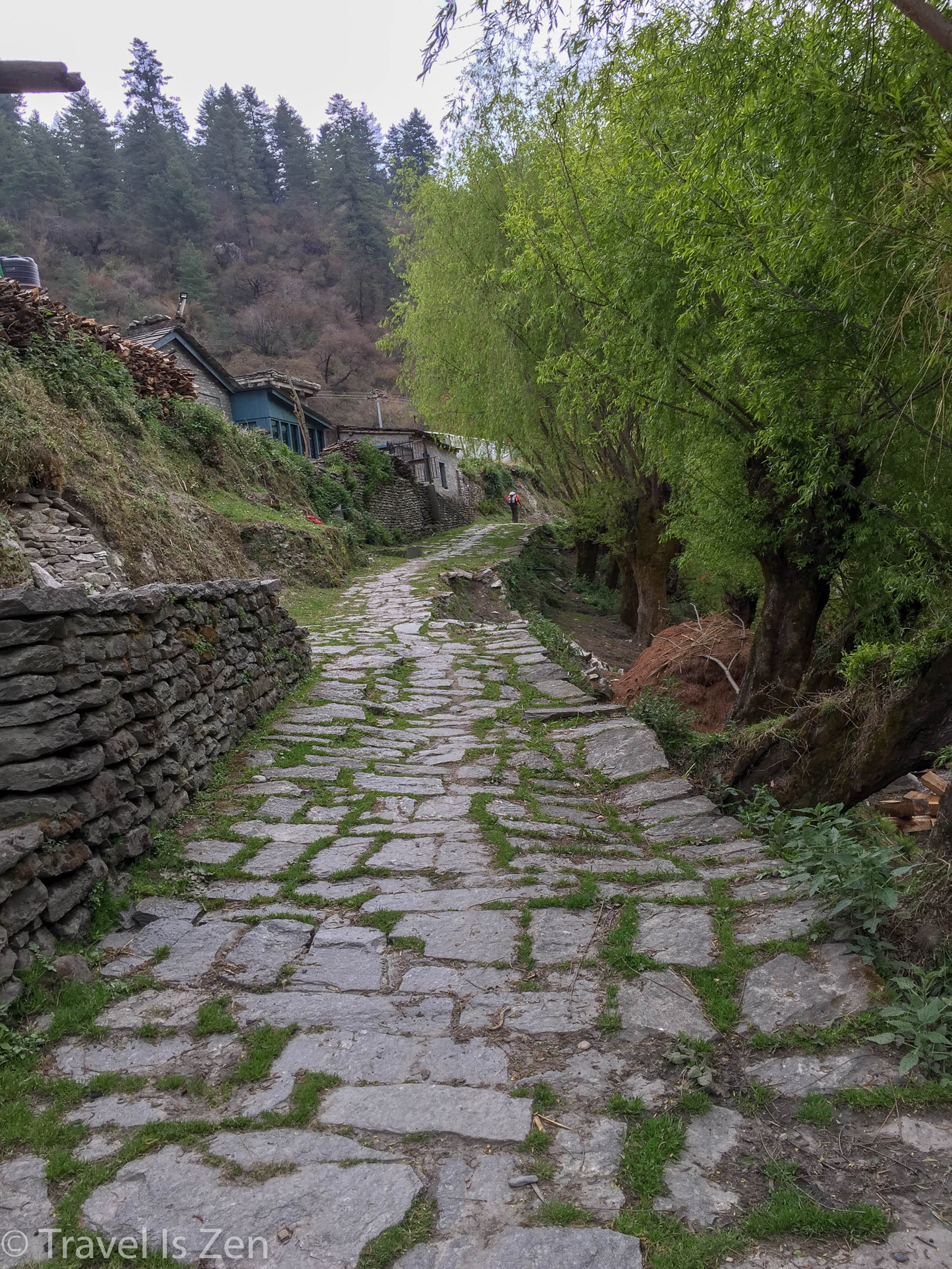 Annapurna Circuit-43.jpg