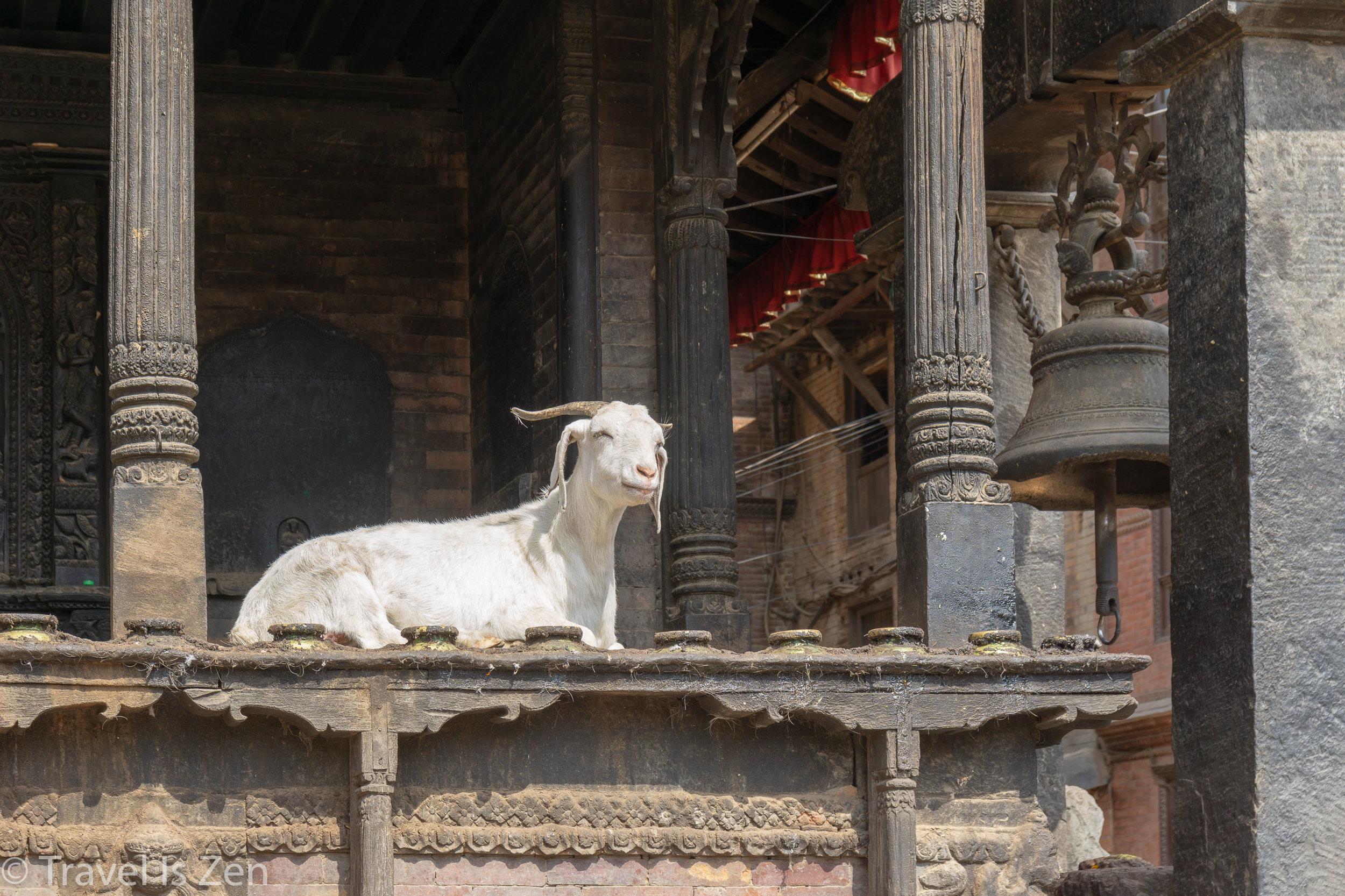 bhaktapur-45.jpg