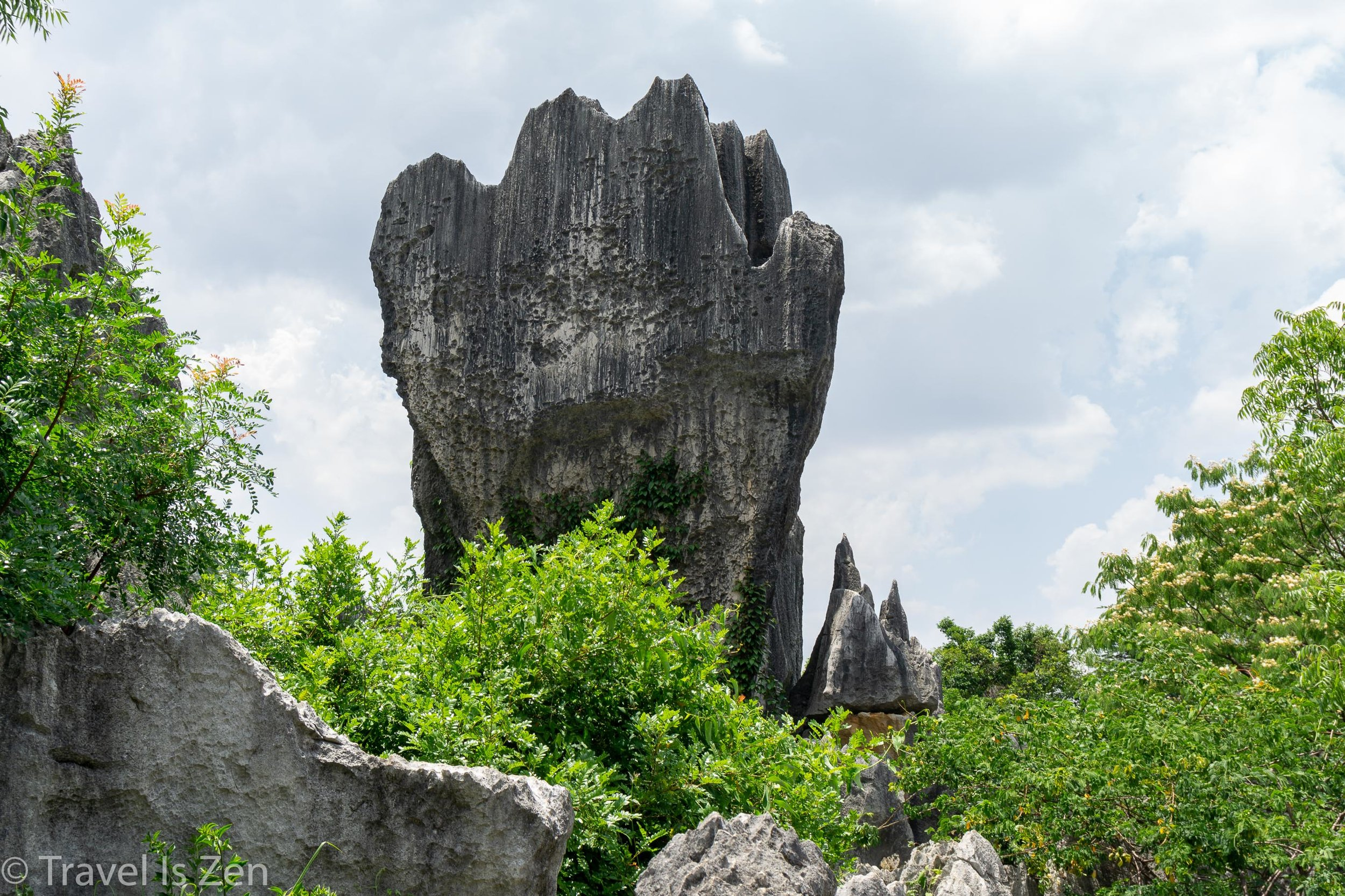 Stone Forest-4.jpg