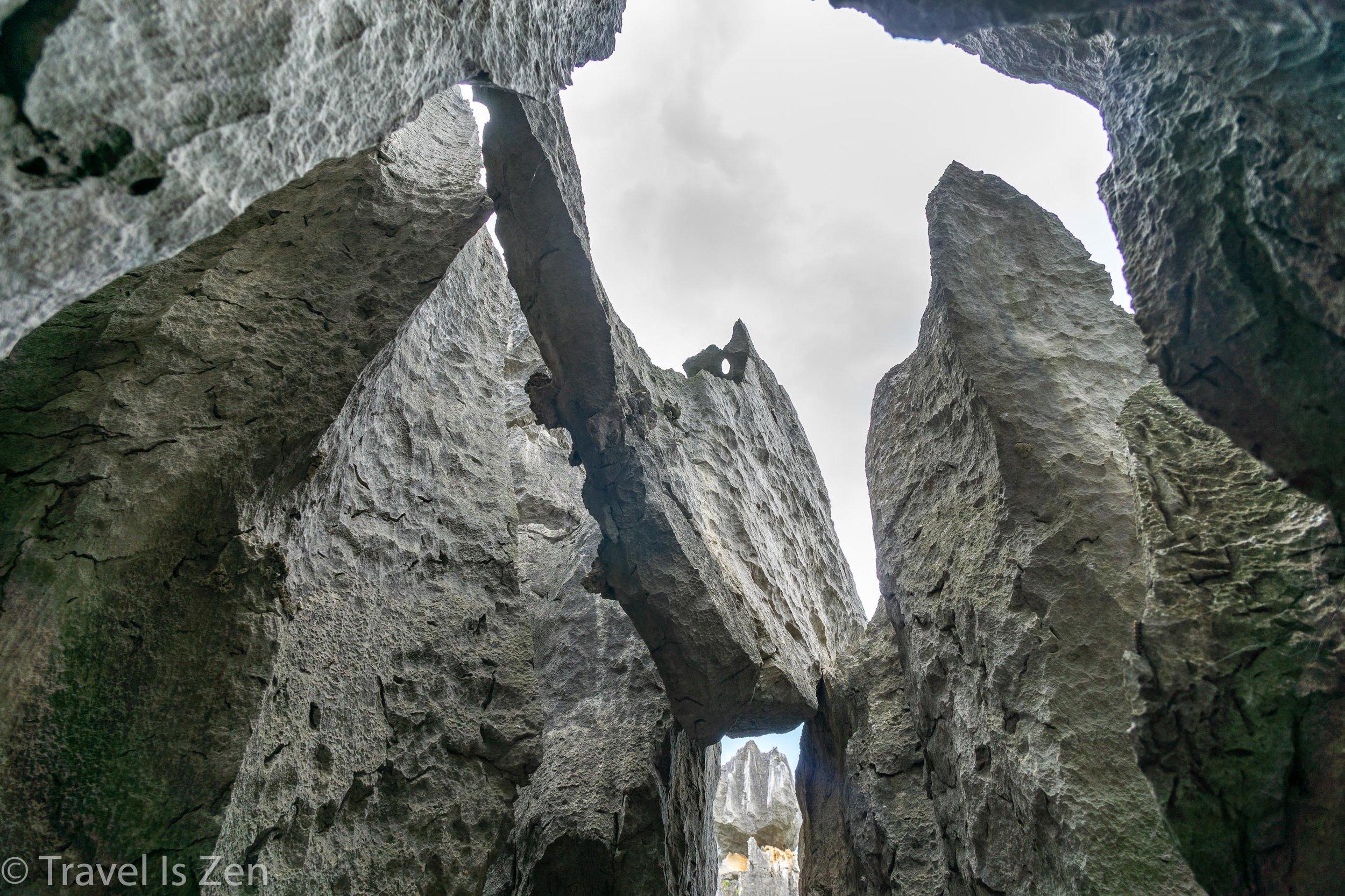 Stone Forest-6.jpg