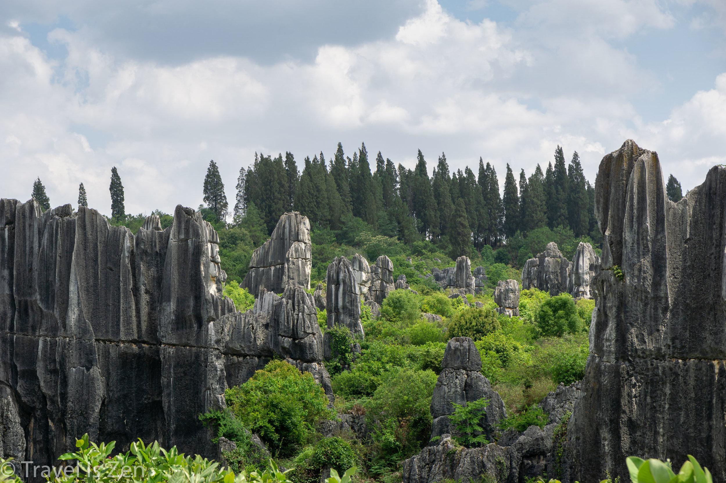 Stone Forest-9.jpg