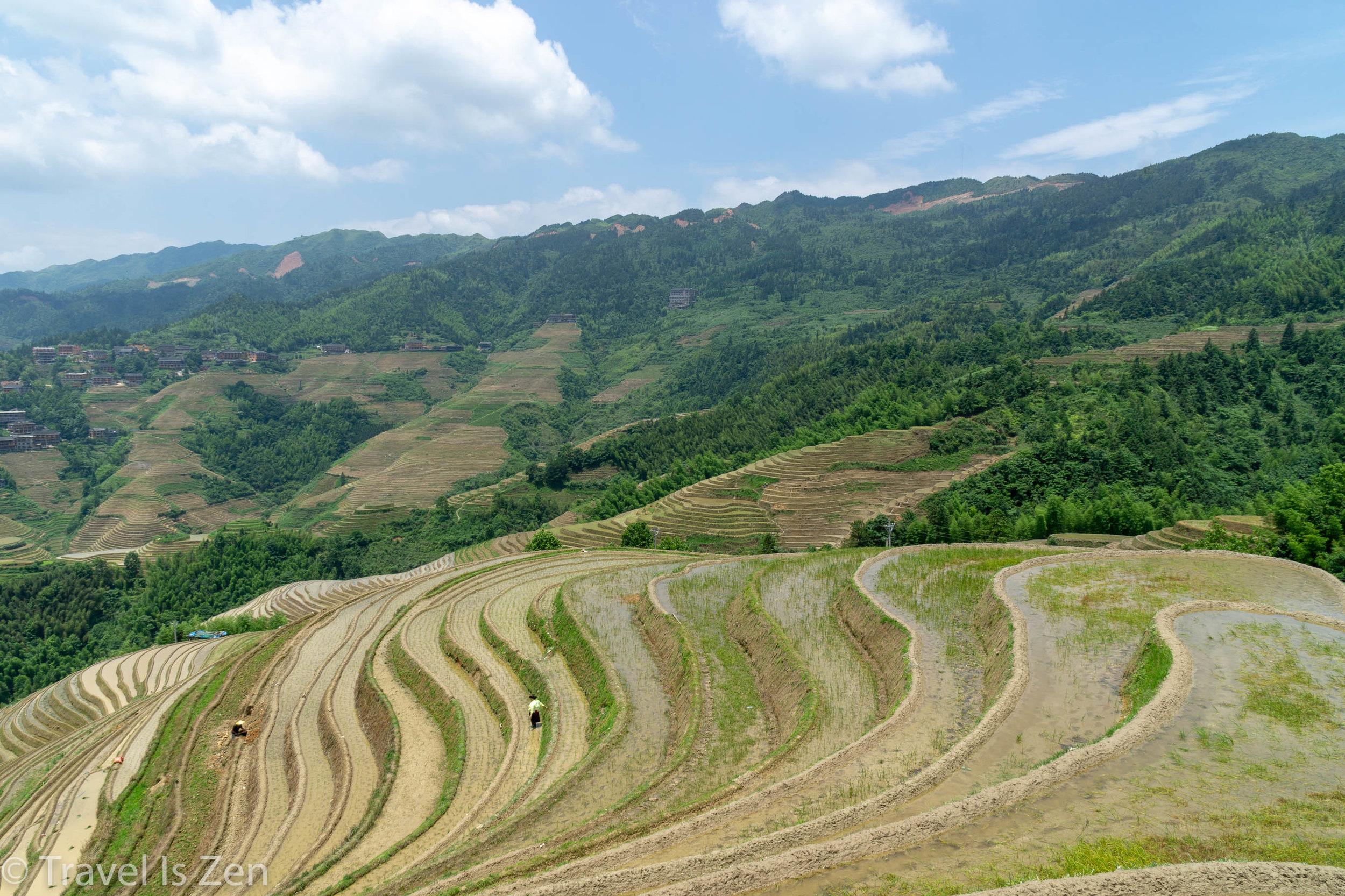 Longji Rice Terrace-8.jpg